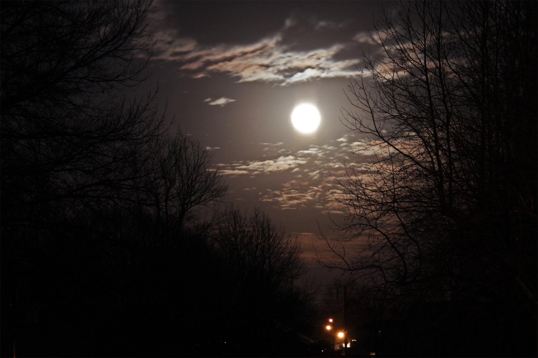 Moonlit Night | | Toward the Goal