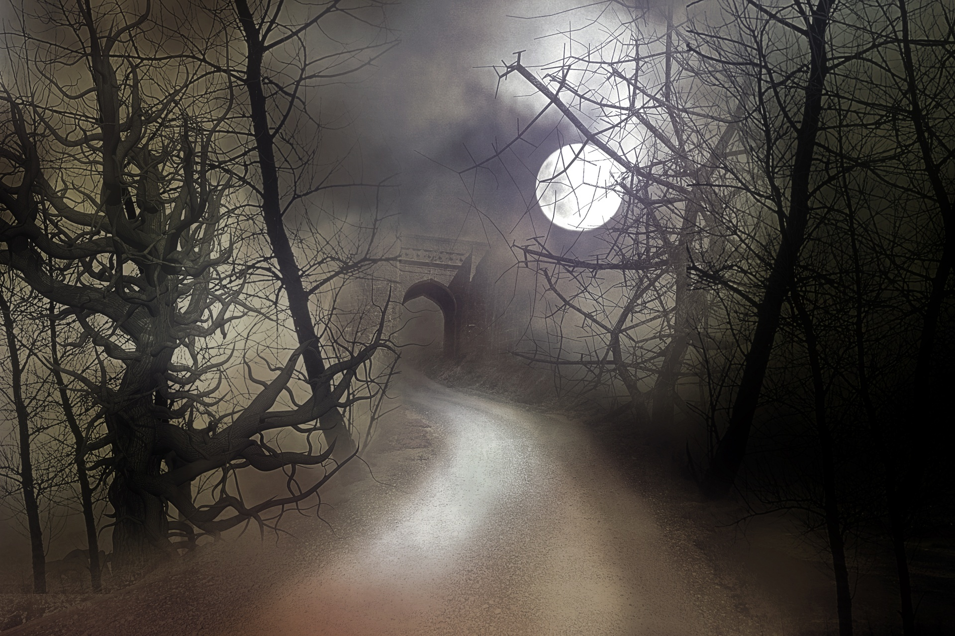 Misty Moonlit Night Free Stock Photo - Public Domain Pictures