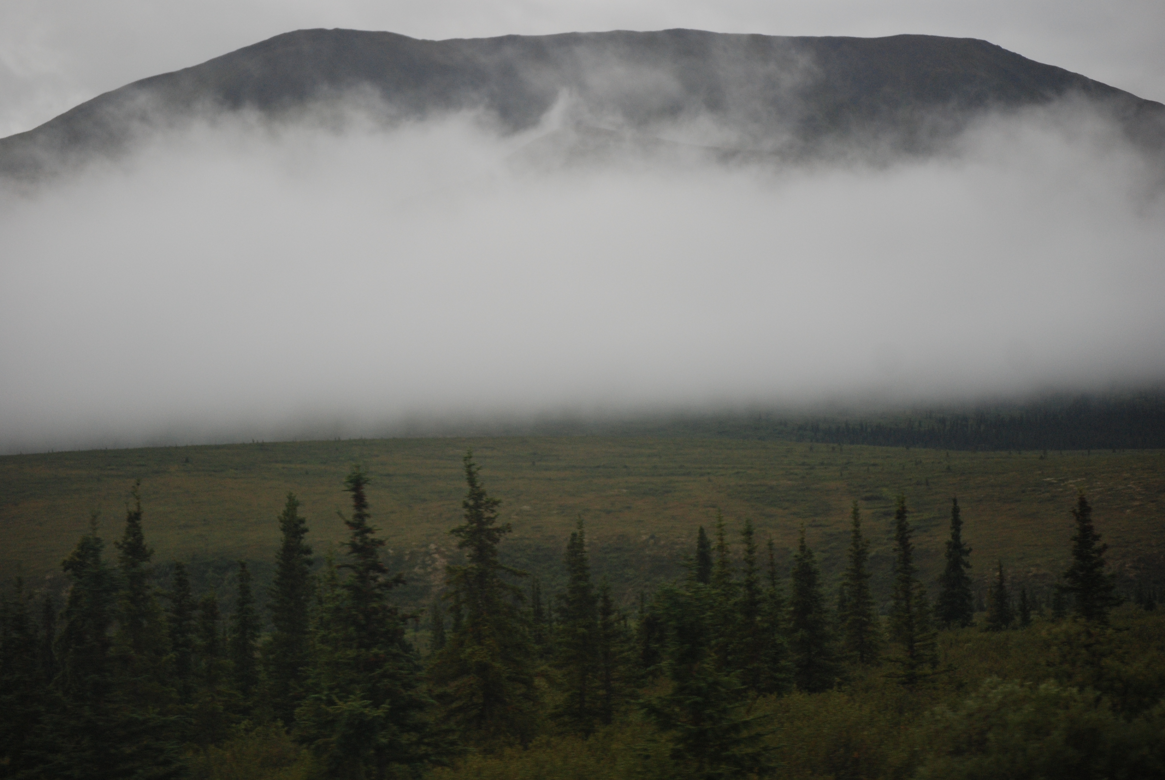 File:Denali Park - early morning fog.jpg - Wikimedia Commons