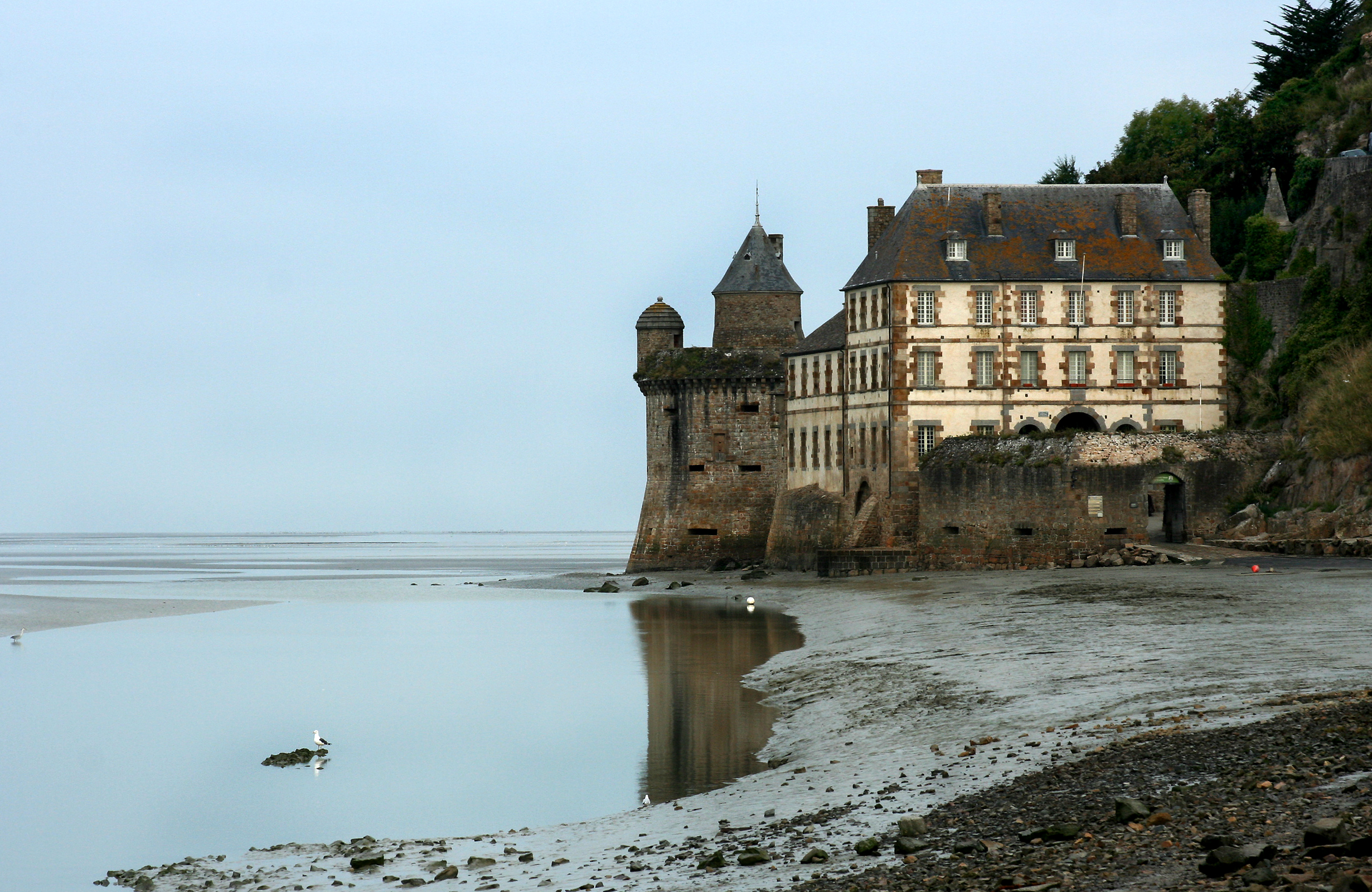 Morning fog, Beach, Bird, Building, Castle, HQ Photo