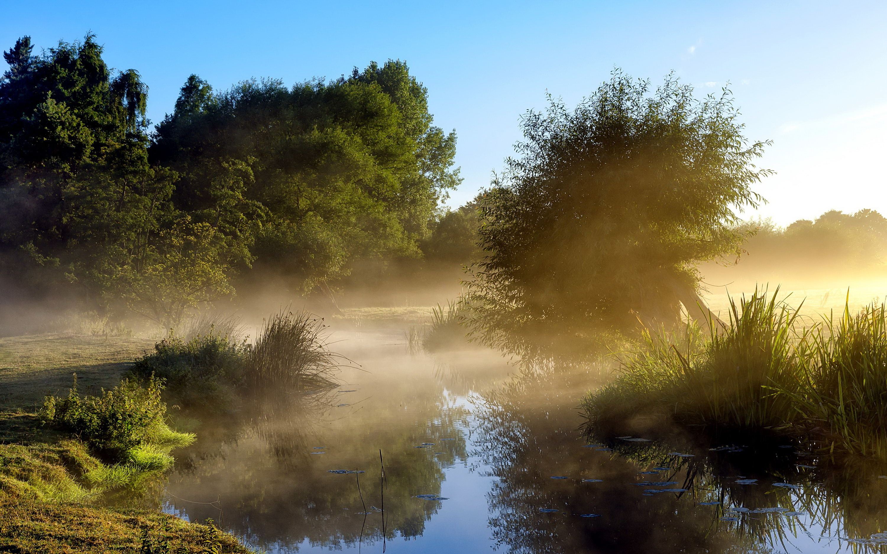Morning fog at the river / 3000 x 1875 / Nature / Photography ...