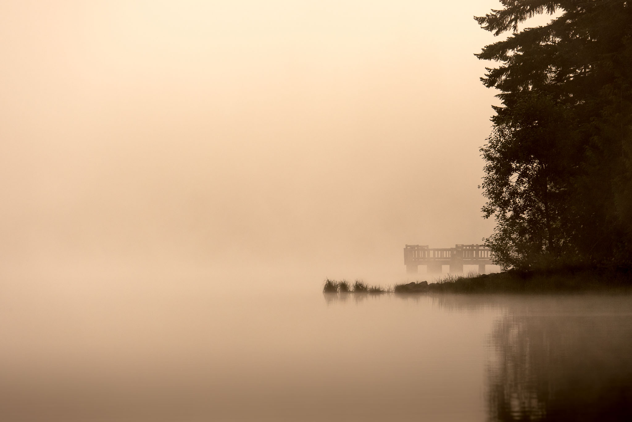 Morning Fog | kenpowellphotography