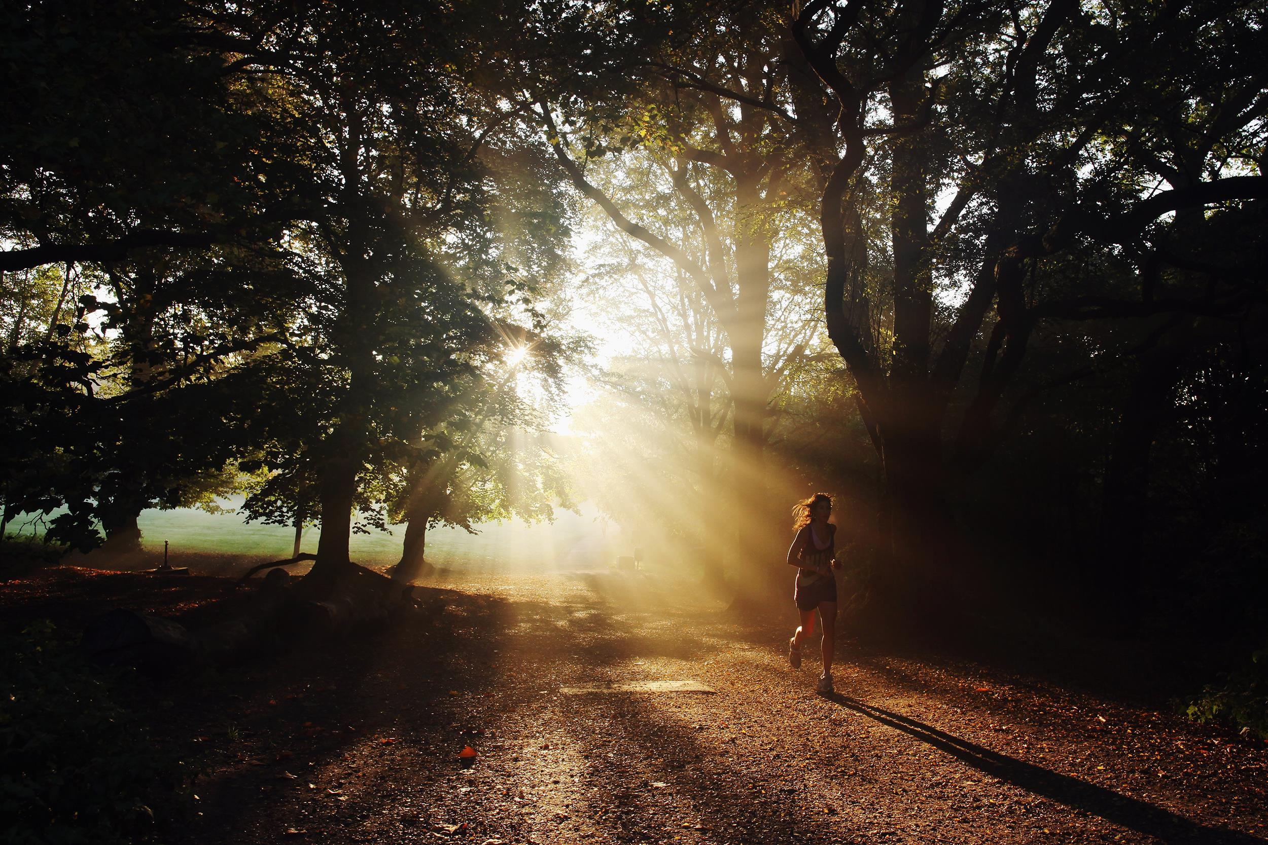 Morning Light Could Be Key to Leaner Physique, Study Finds