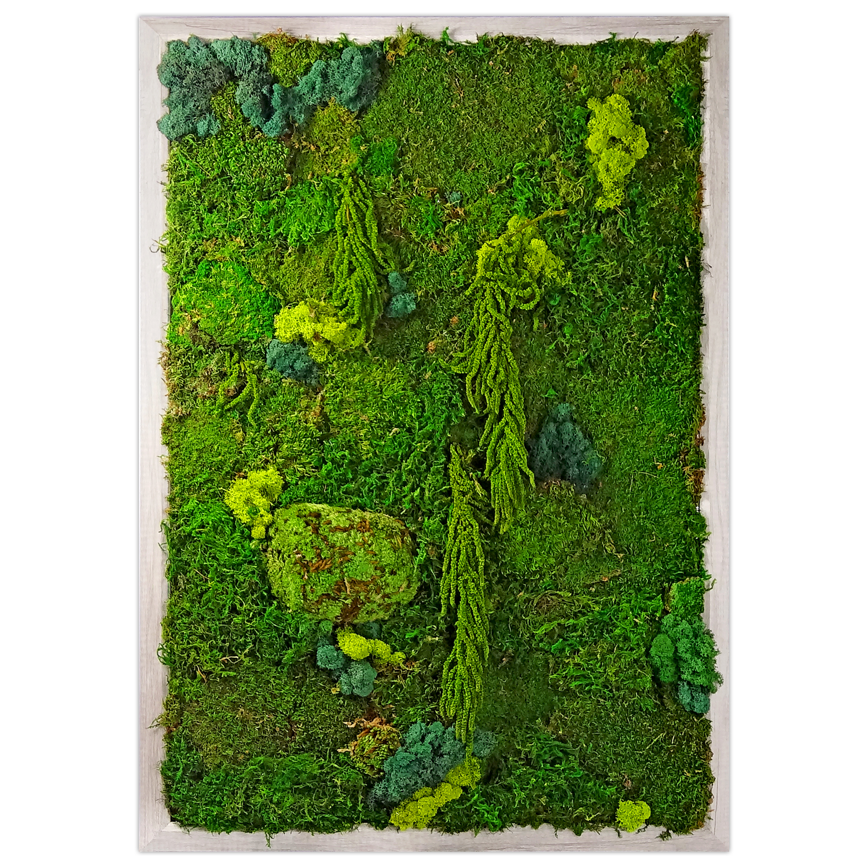 Preserved Moss Wall Garden | Luludi Living Art | AHAlife