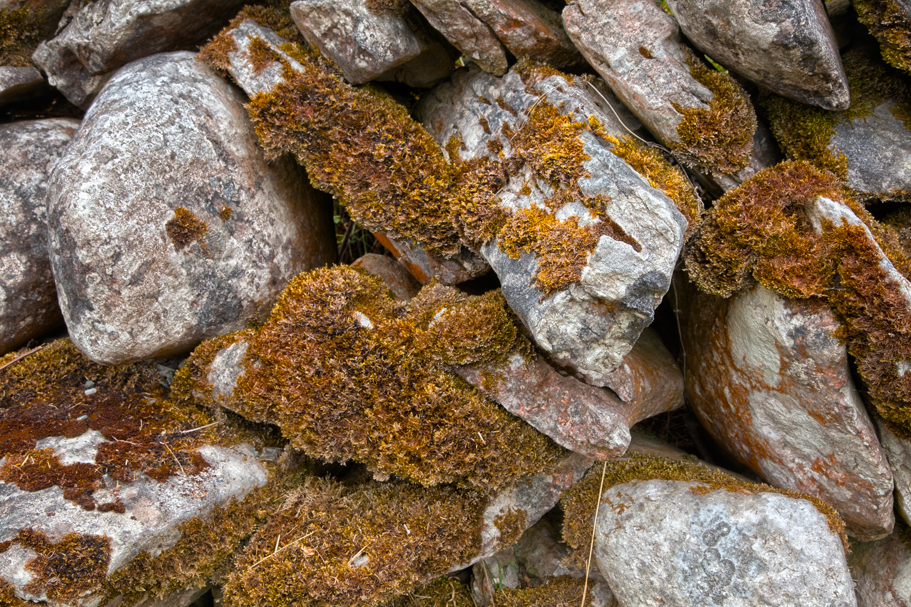 Mossy Rocks Texture, Backdrop, Shapes, Photo, Photograph, HQ Photo