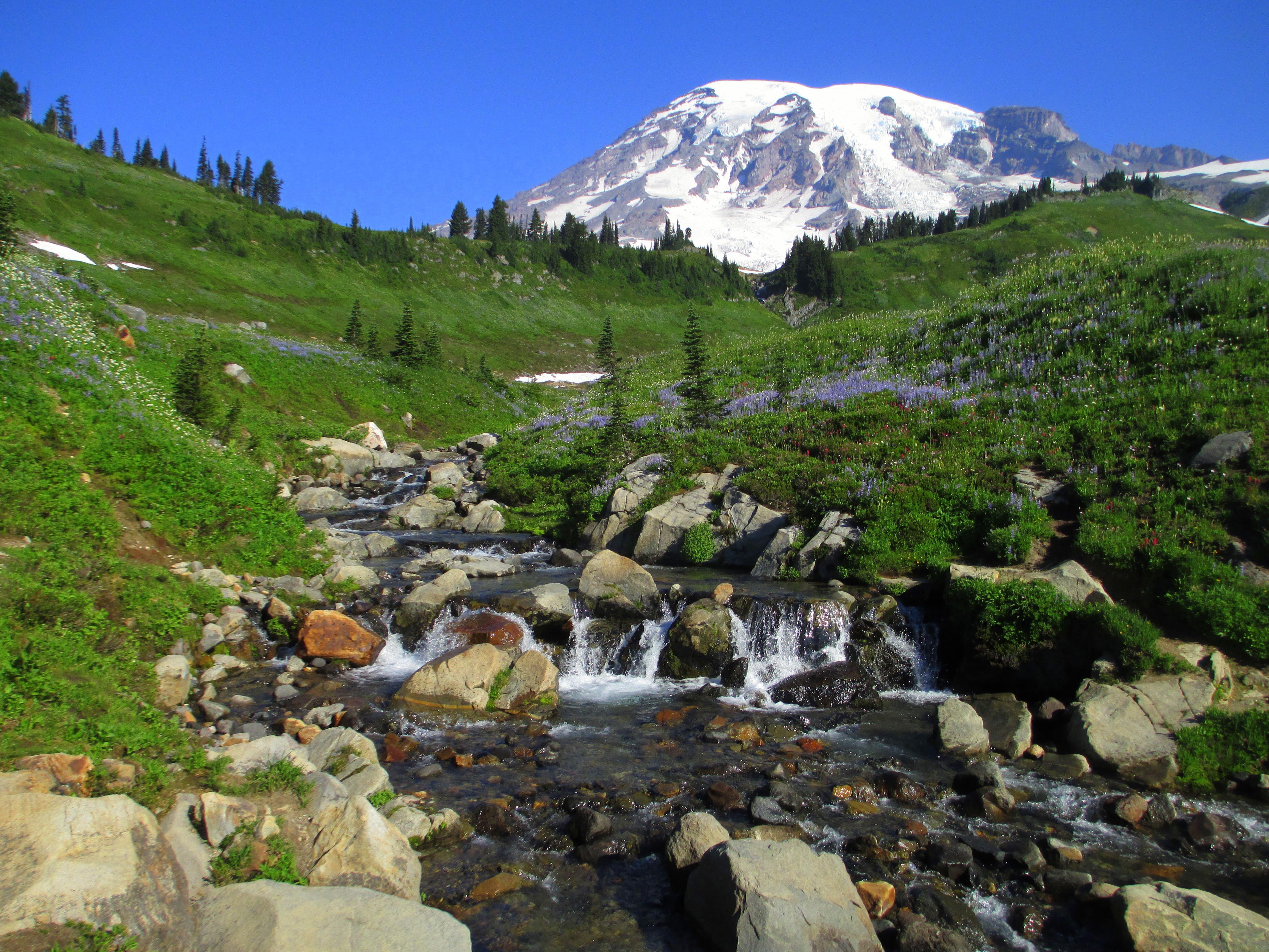 Mount Rainier National Park - Wikipedia