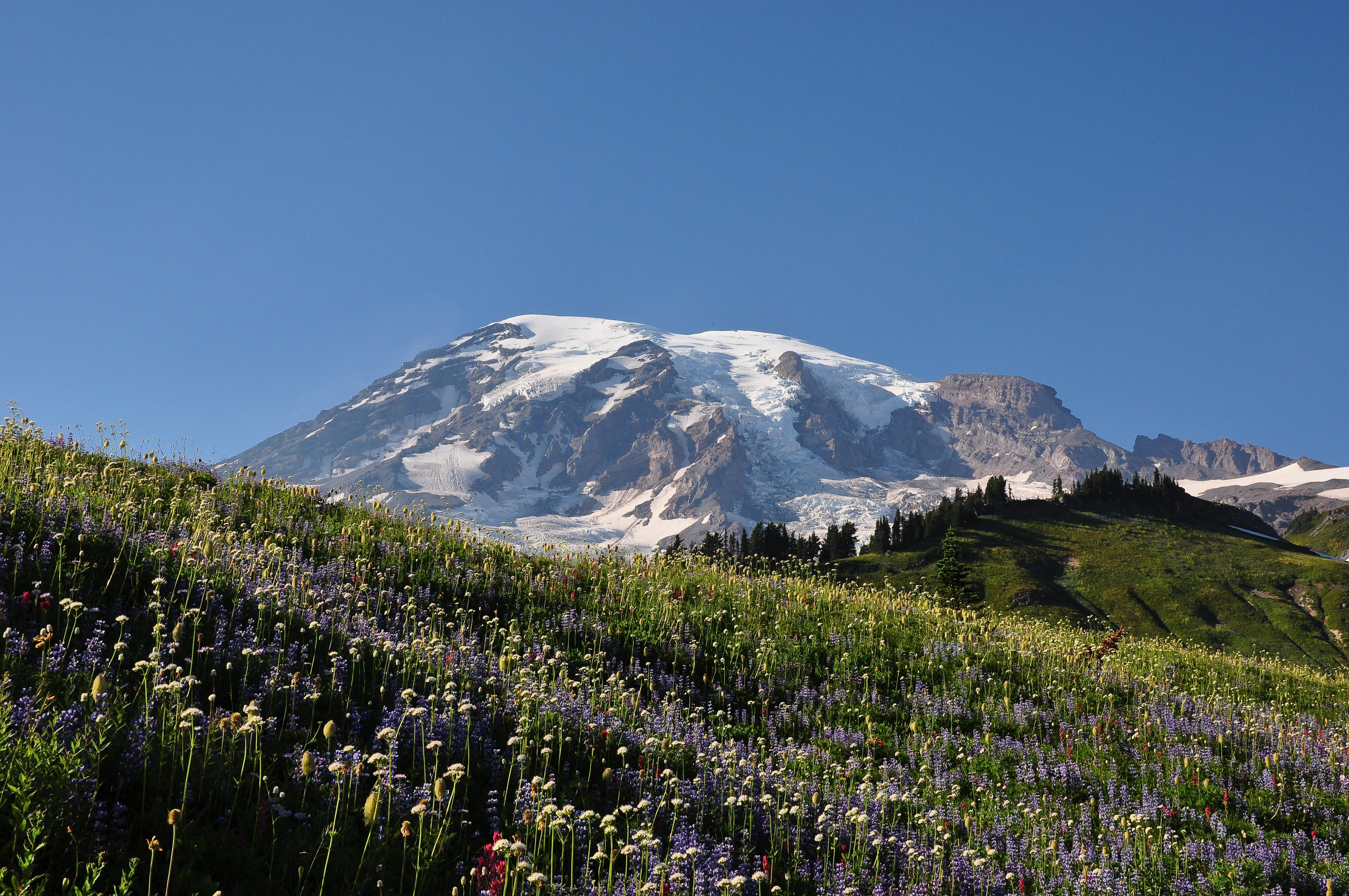 File:Mount Rainier (Washington state, USA).jpg - Wikimedia Commons