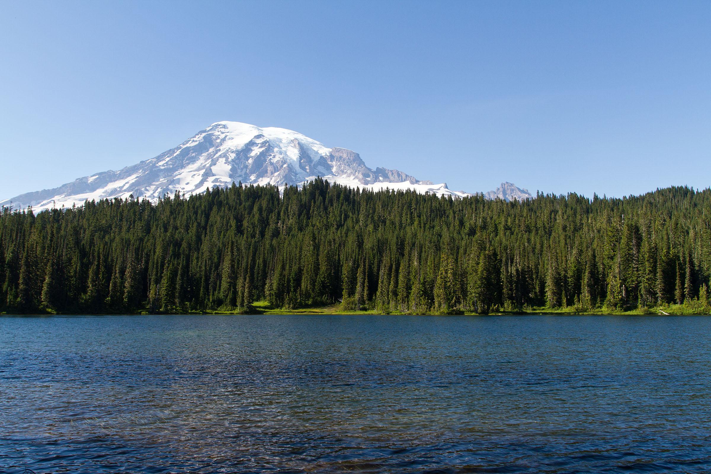 Mount Rainer, Washington., Alpine, Snow, Park, Path, HQ Photo