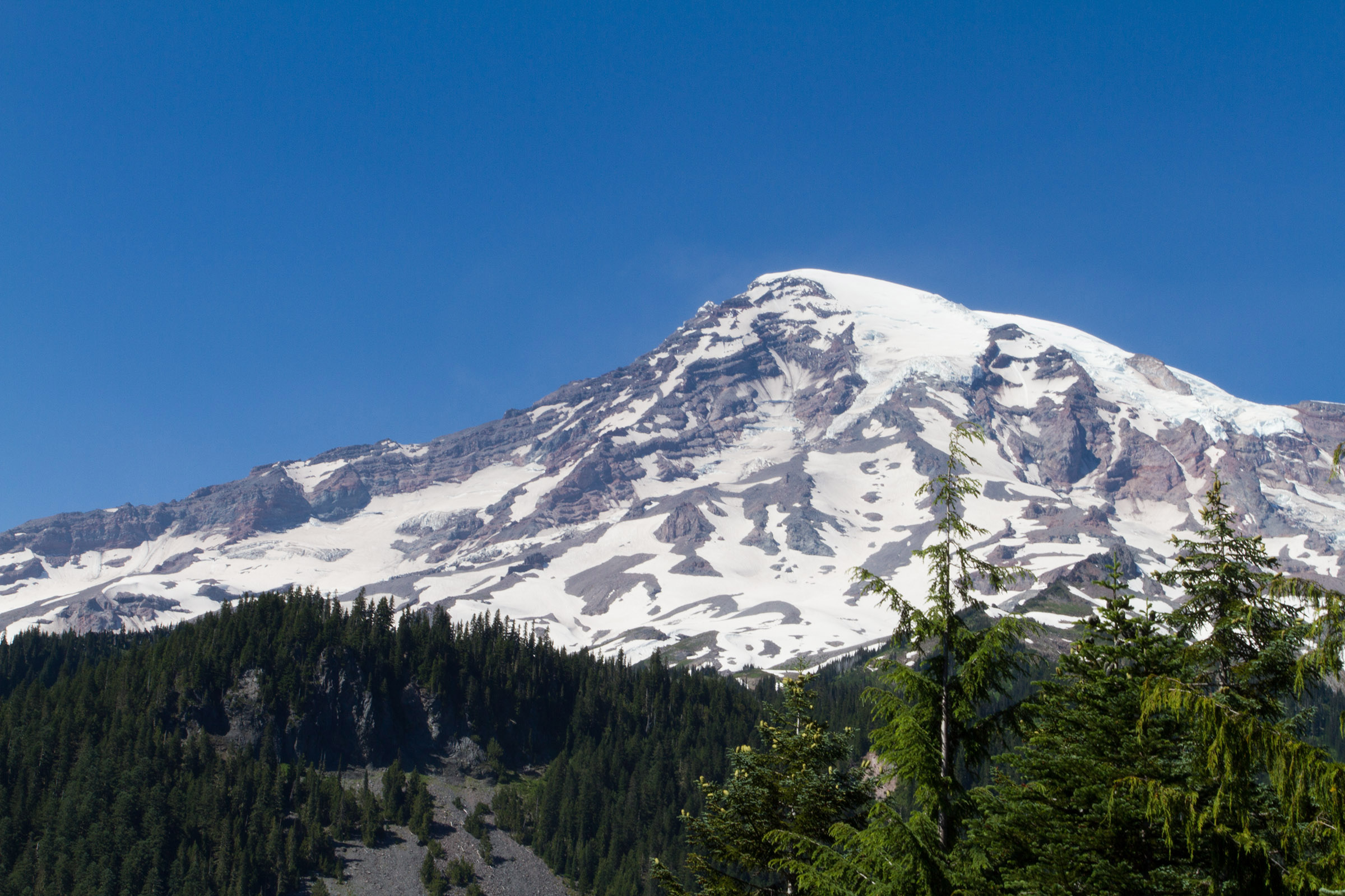 Mount Rainer, Washington, Alpine, Scenics, Park, Path, HQ Photo