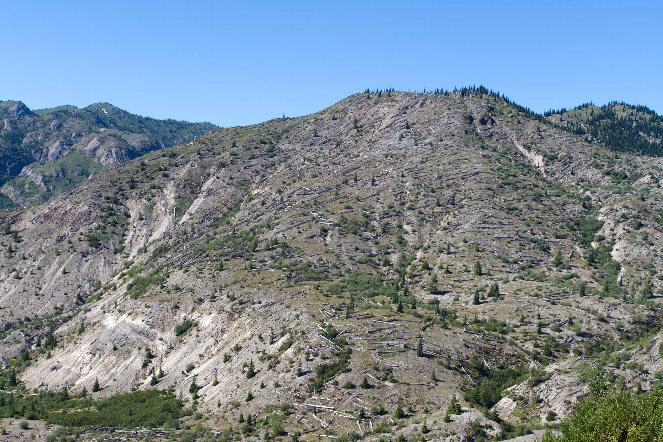 Mount saint helens photo