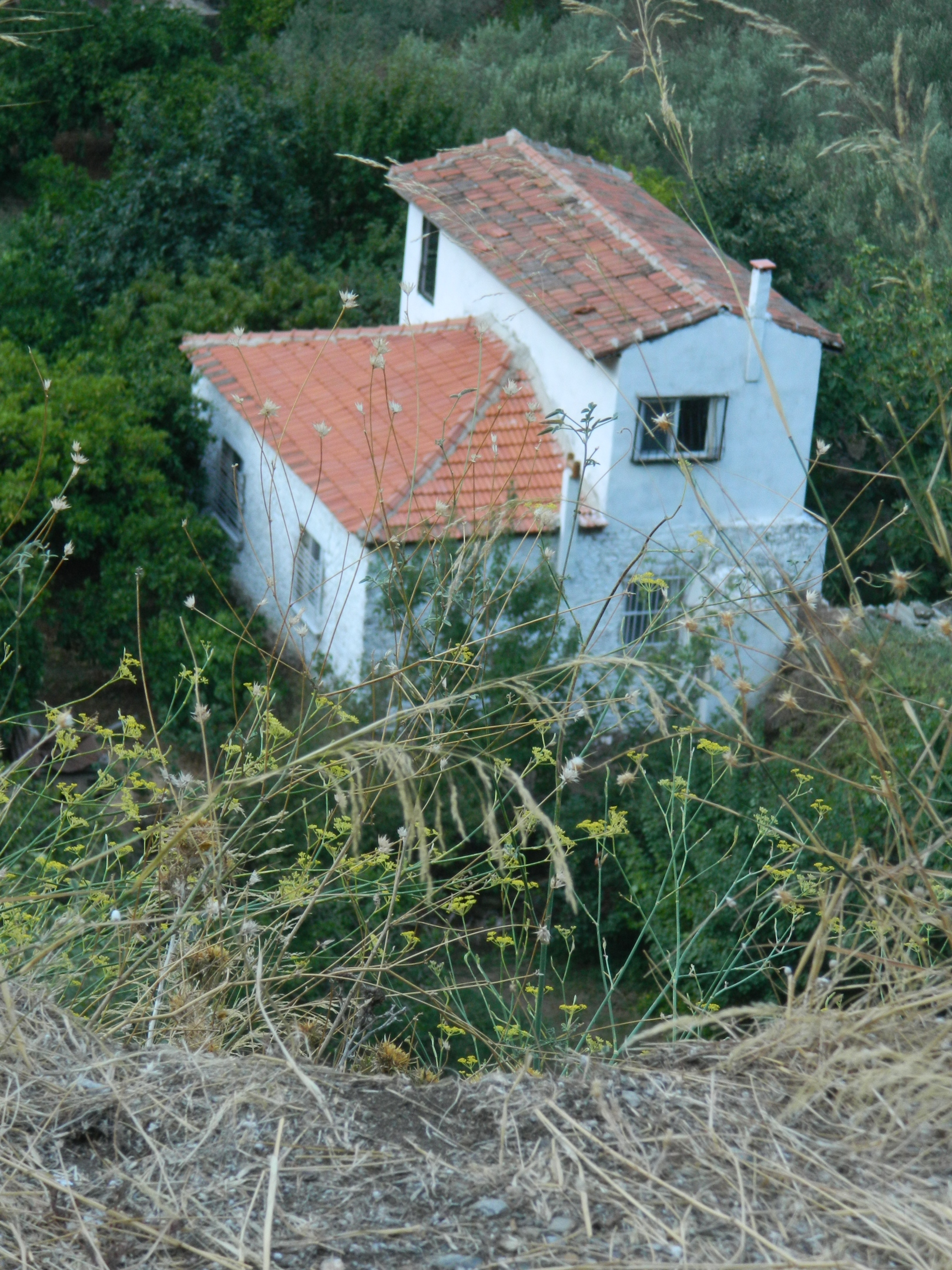 Mountain House, Abandoned, Hill, Home, House, HQ Photo