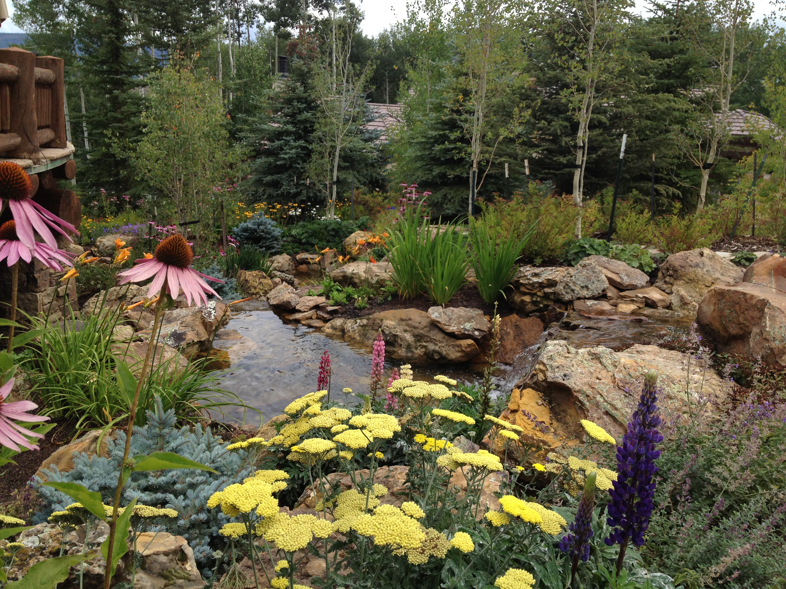 Mountain Landscaping Ideas Luxury Front Yard Landscaping Ideas ...