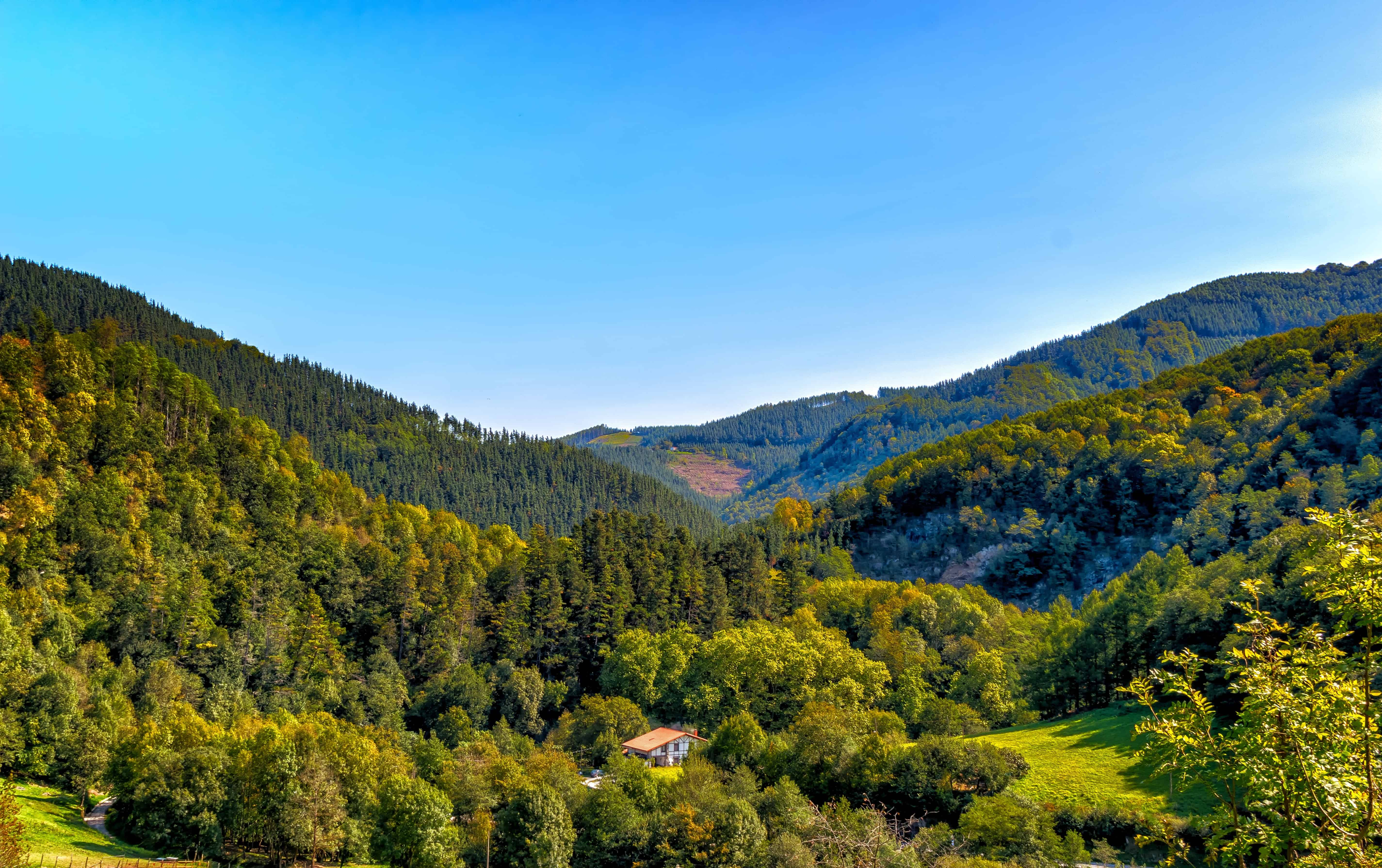 Free picture: sky, nature, wood, mountain, landscape, tree, valley ...