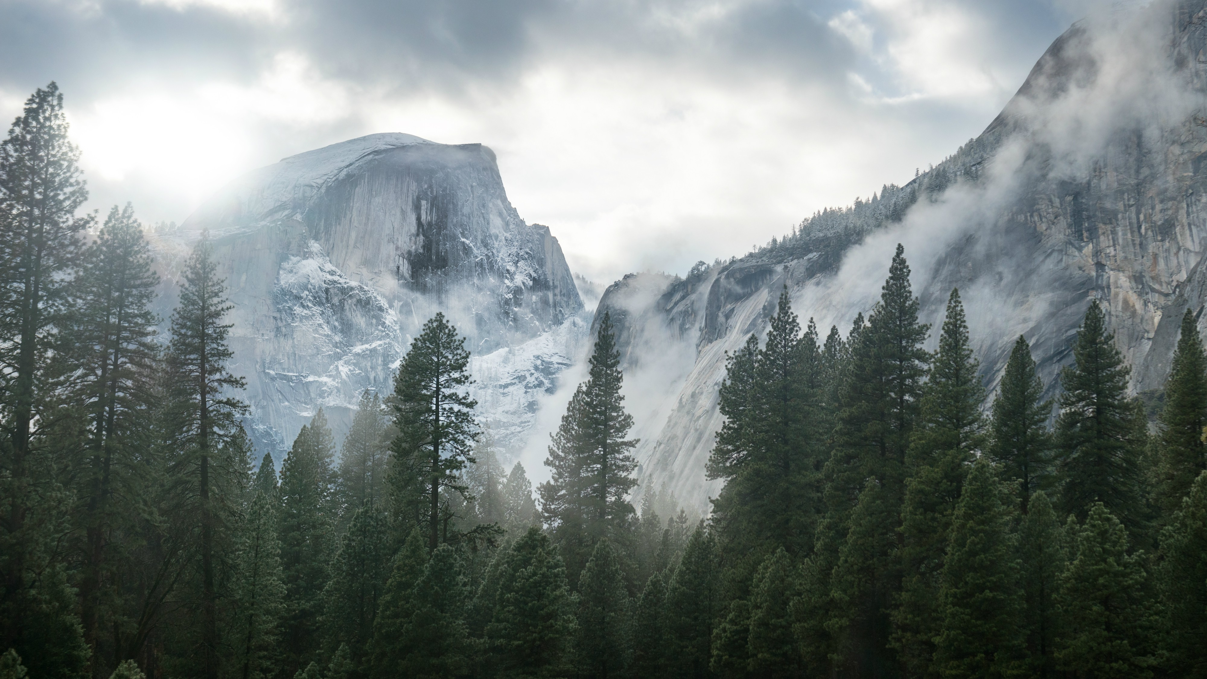 Yosemite National Park, Nature, Mountain, Trees, Mist Wallpapers HD ...