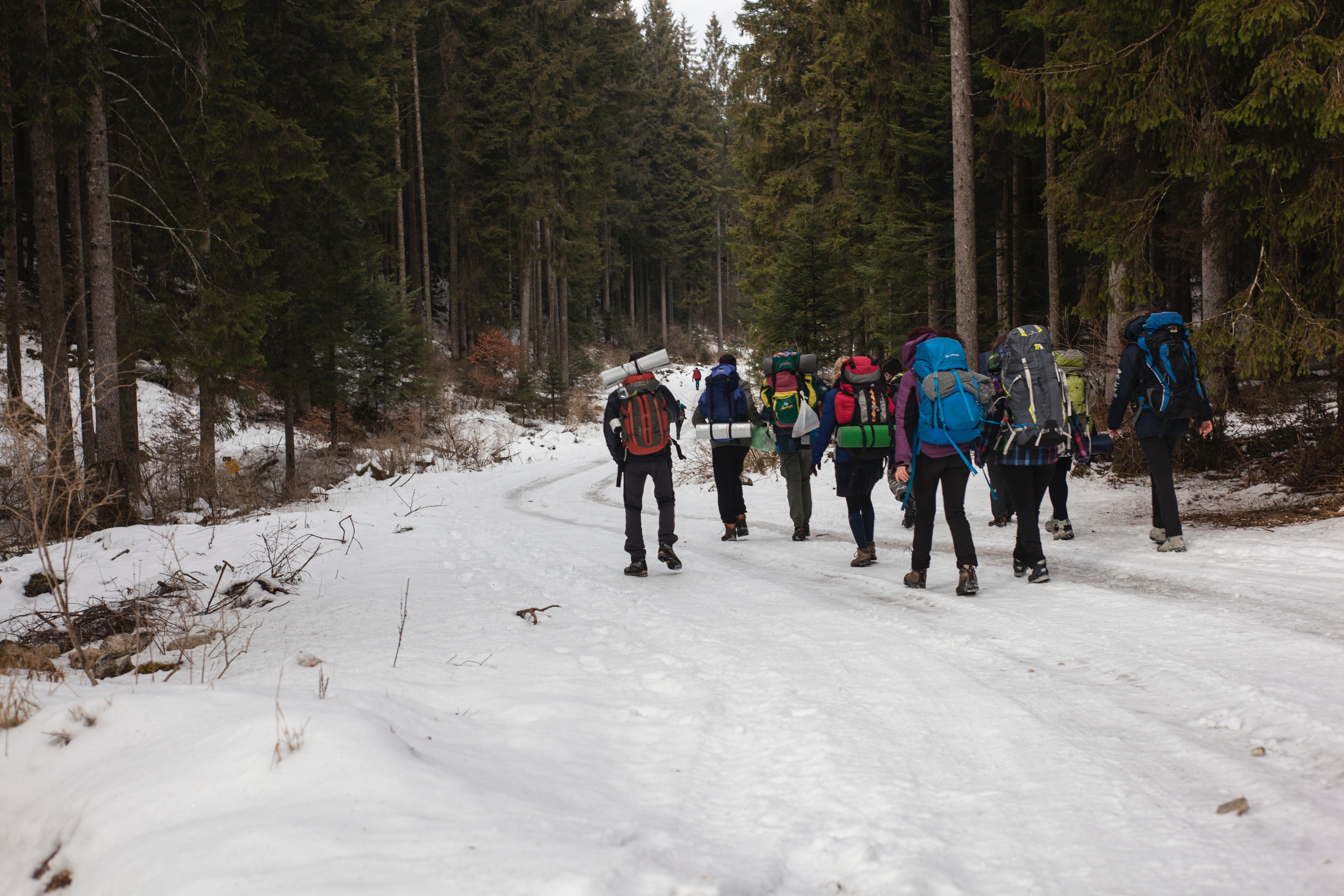 Mountaineers walking on snow photo