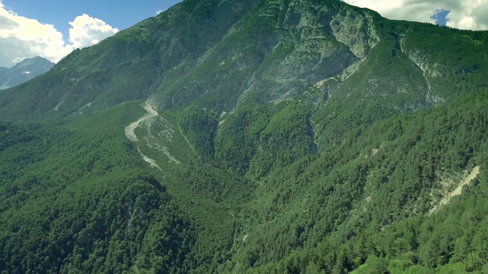 Mountains range green large lush forest skyline Austria Alps horizon ...