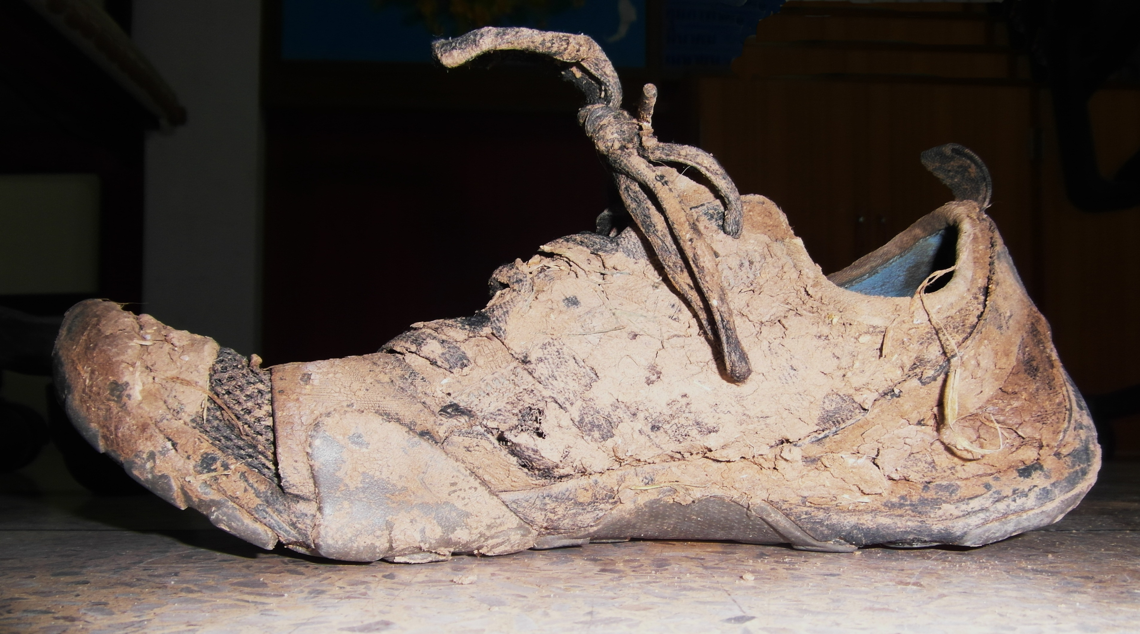 Muddy sport shoe photo