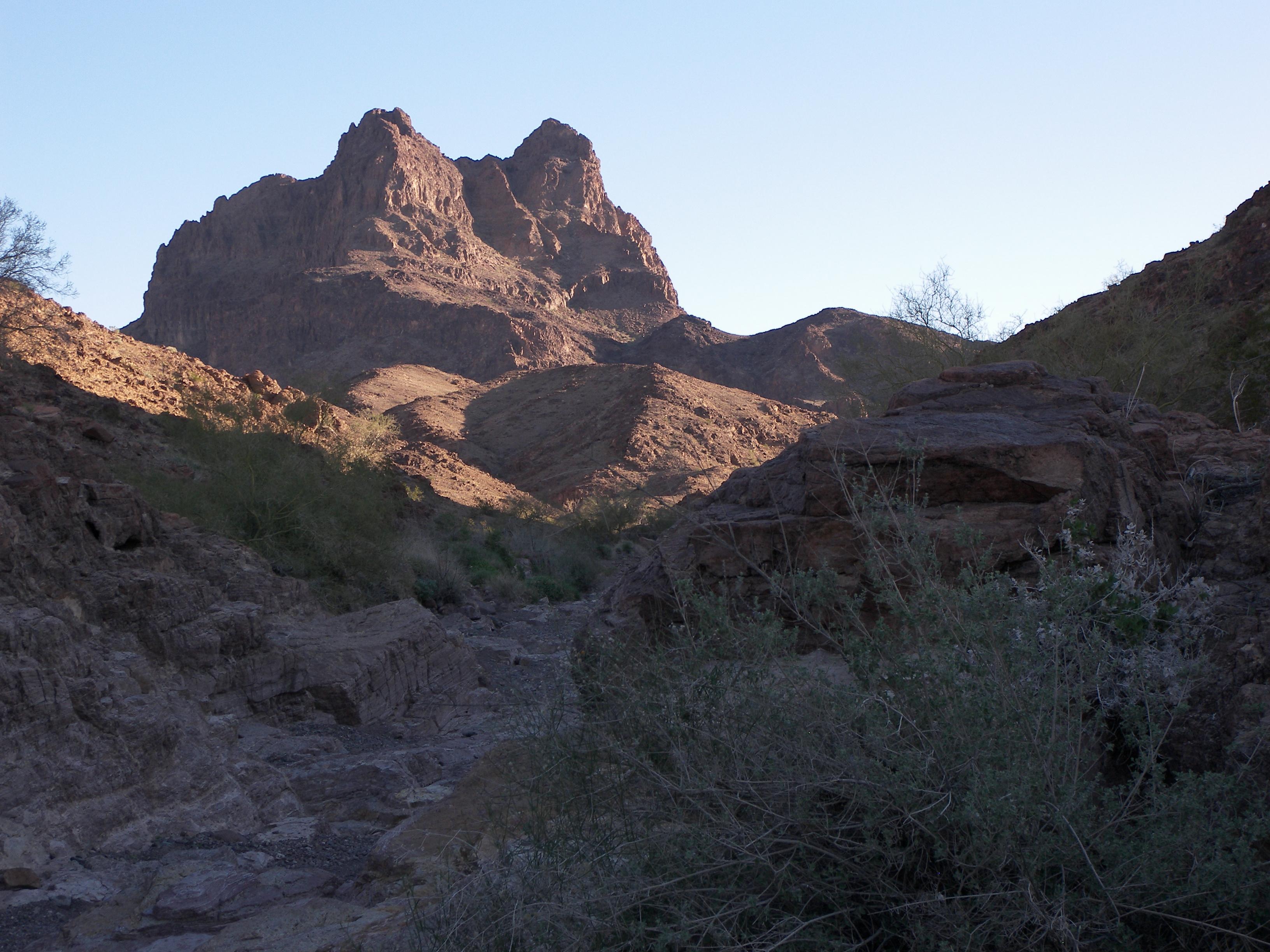 Muggins mountains wilderness photo