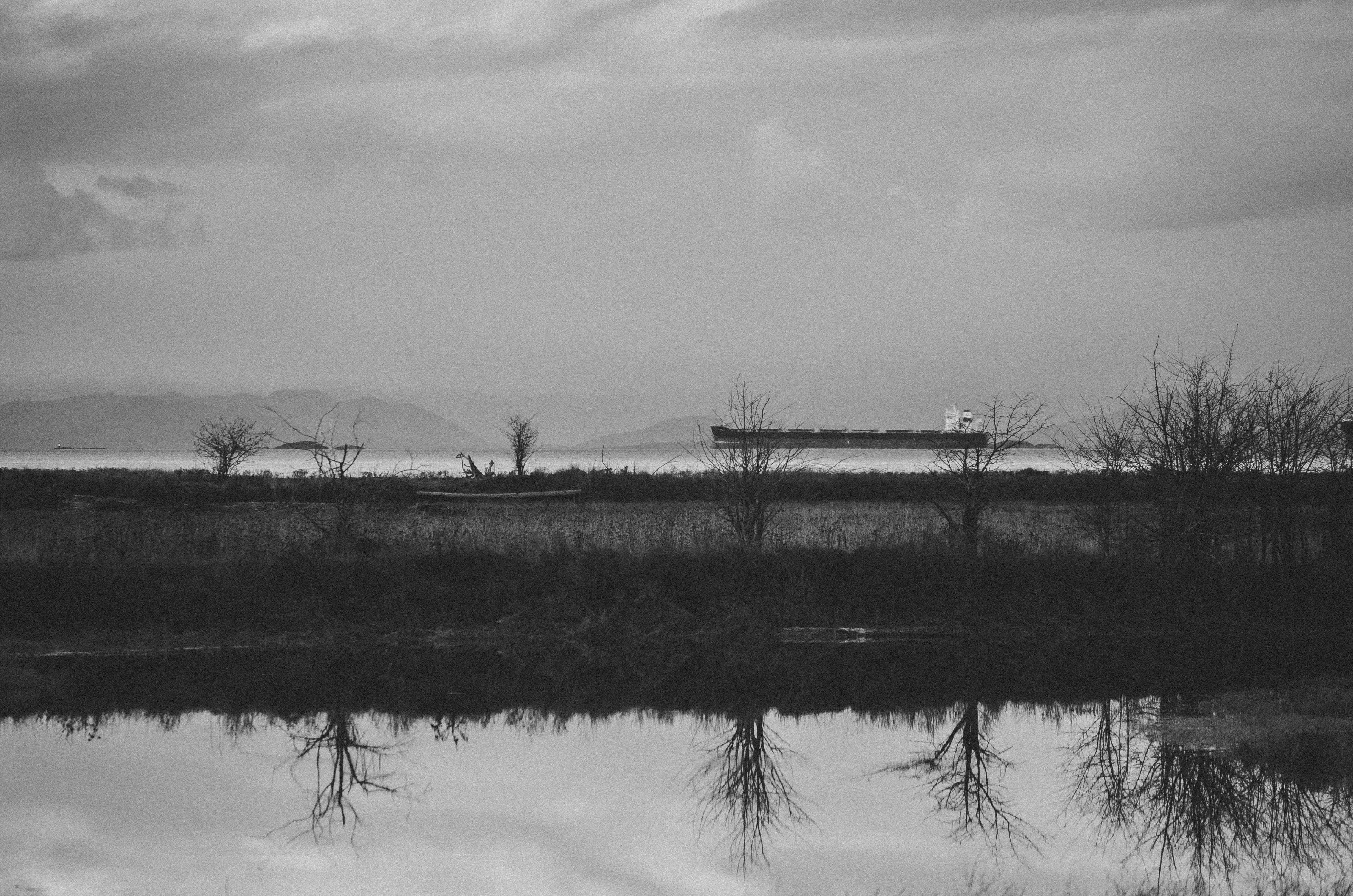 Nanaimo River Estuary, Blackandwhite, Field, Landscape, Monochrome, HQ Photo