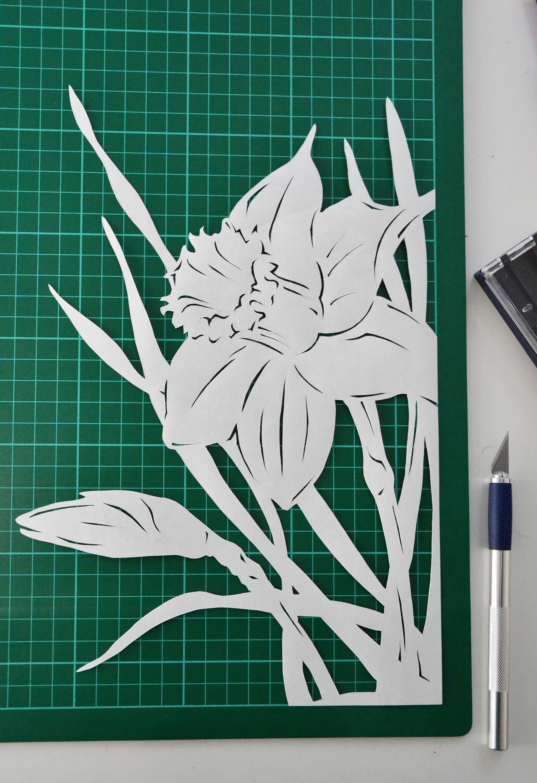 Narcissus paper cutting, Art, Papercut, Minimal, Minimalistic, HQ Photo
