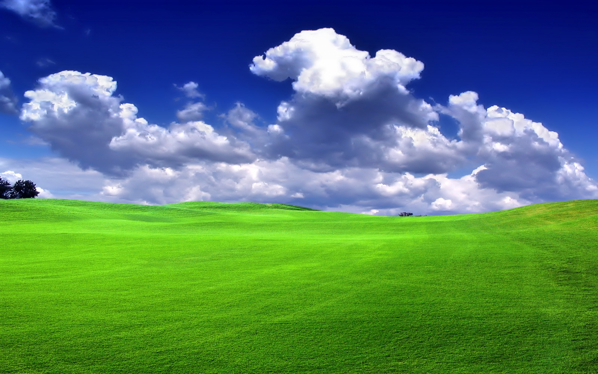 grass images Grass & nature view HD wallpaper and background photos ...