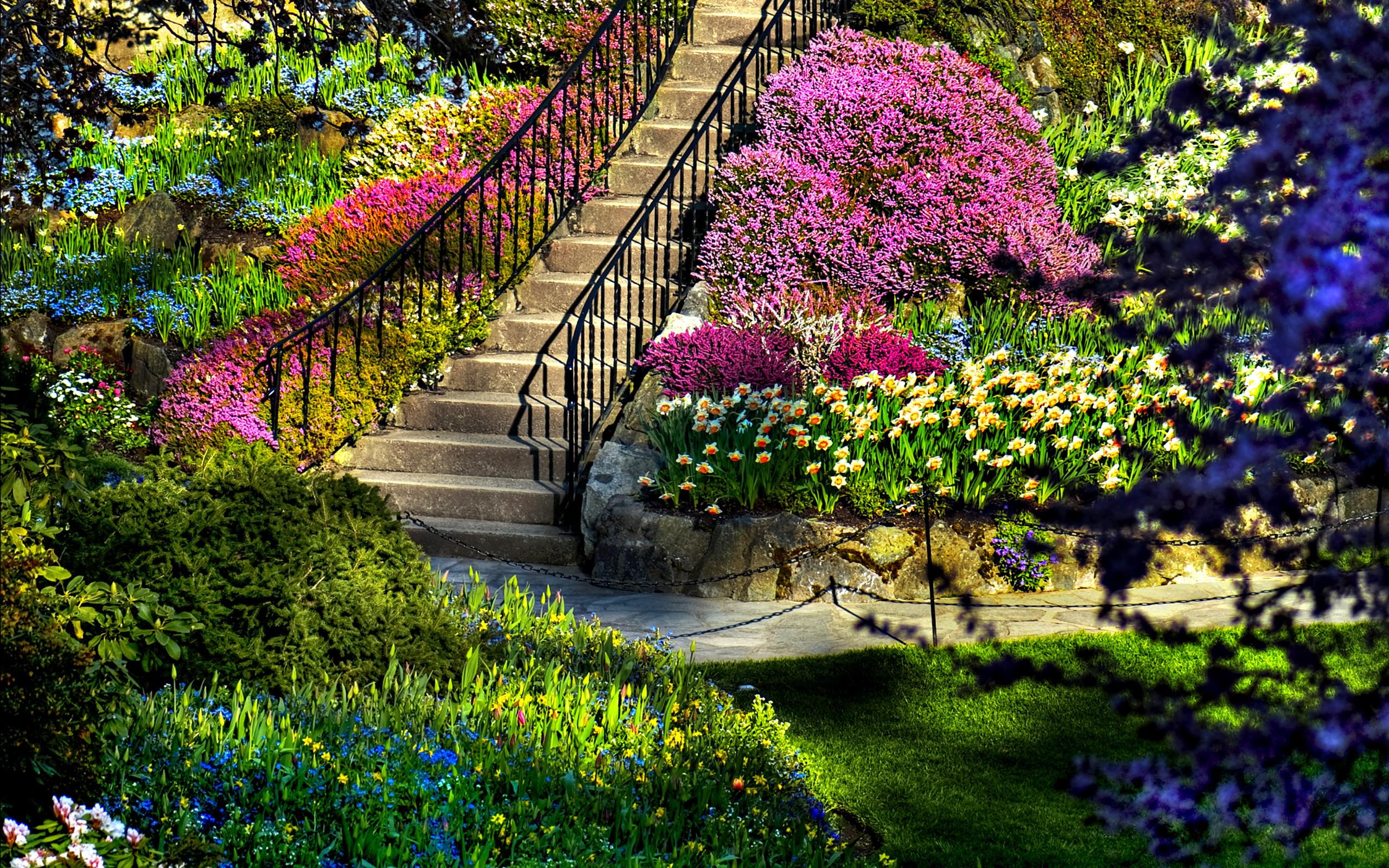 Image Of Nature - Alchemywellnessspa.com
