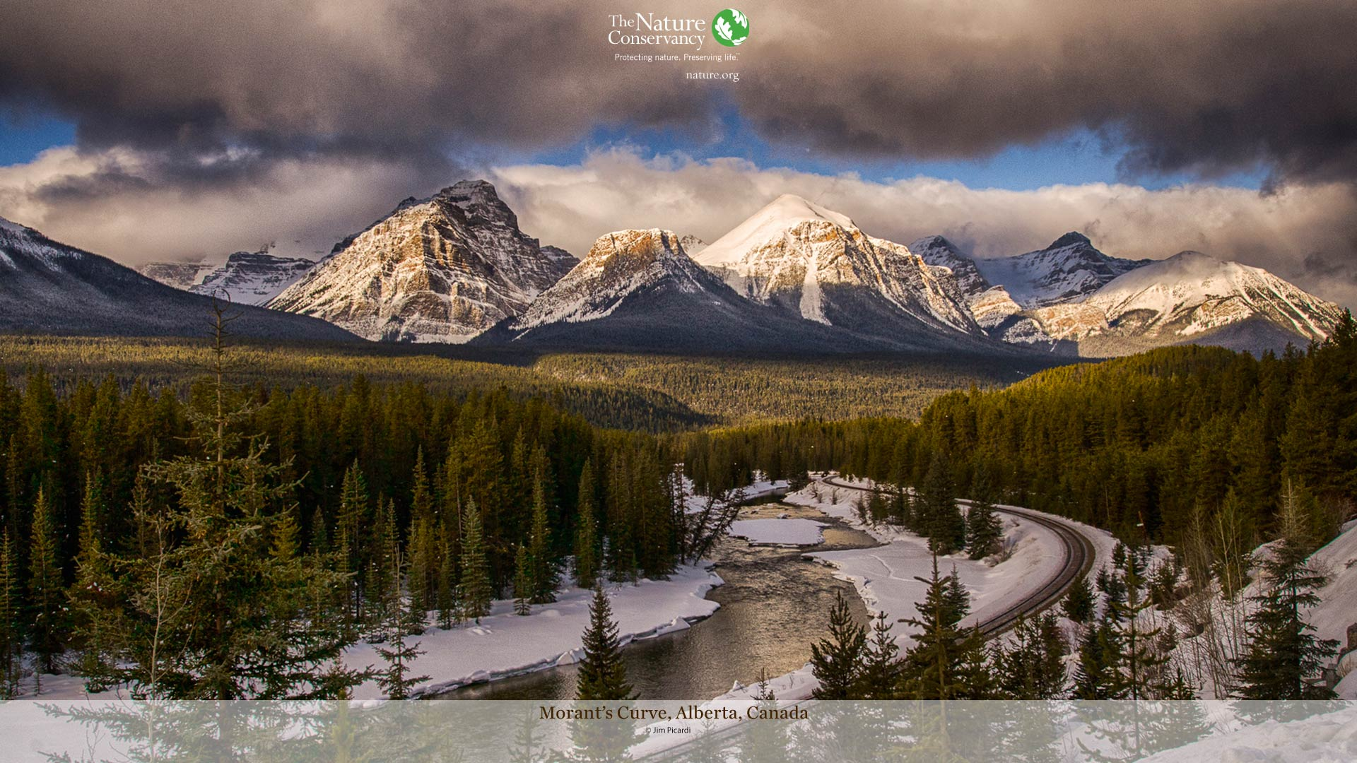 Nature Photo of the Month Desktop Wallpaper | The Nature Conservancy