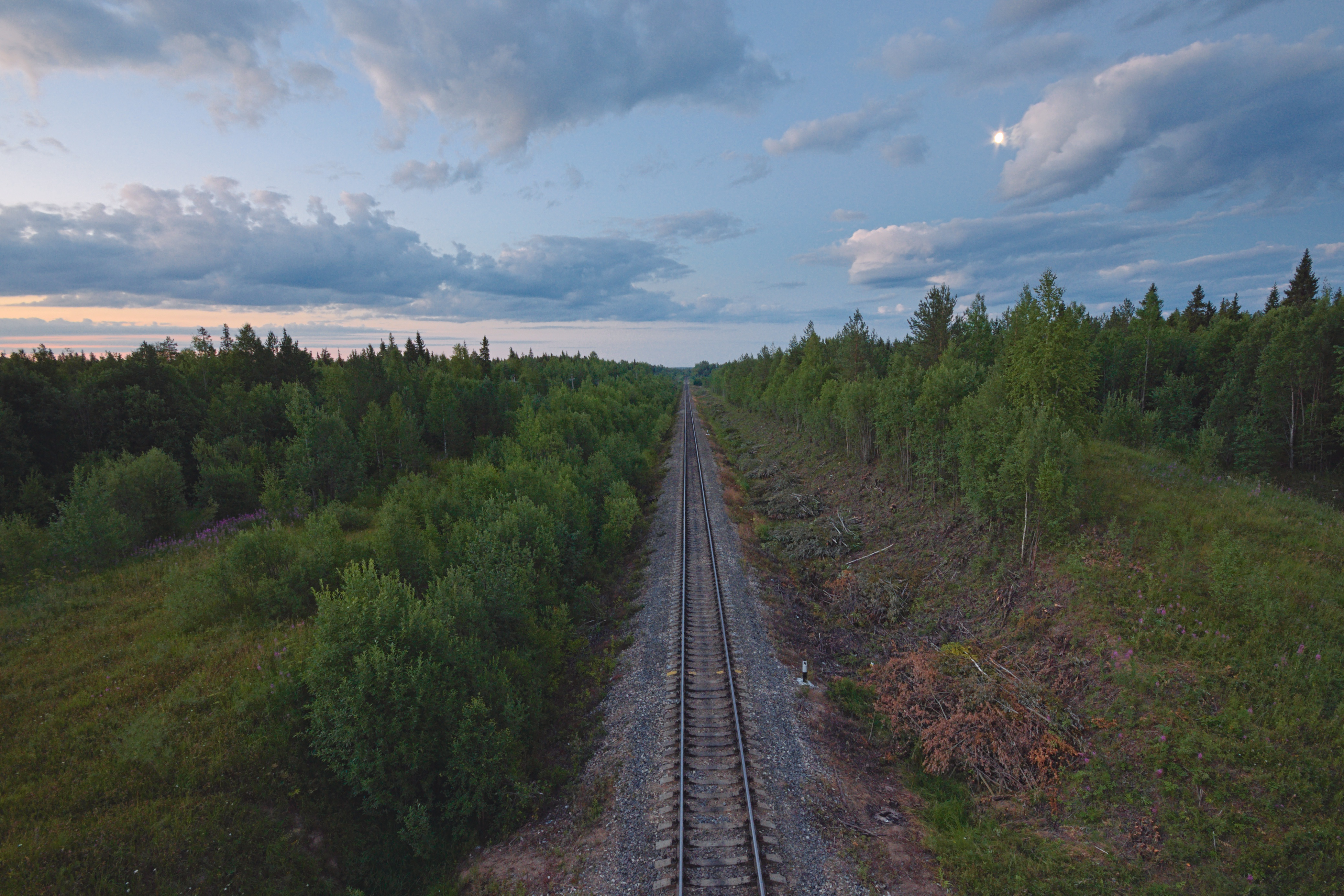 Nature, Track, Trees, Rail, Metal, HQ Photo