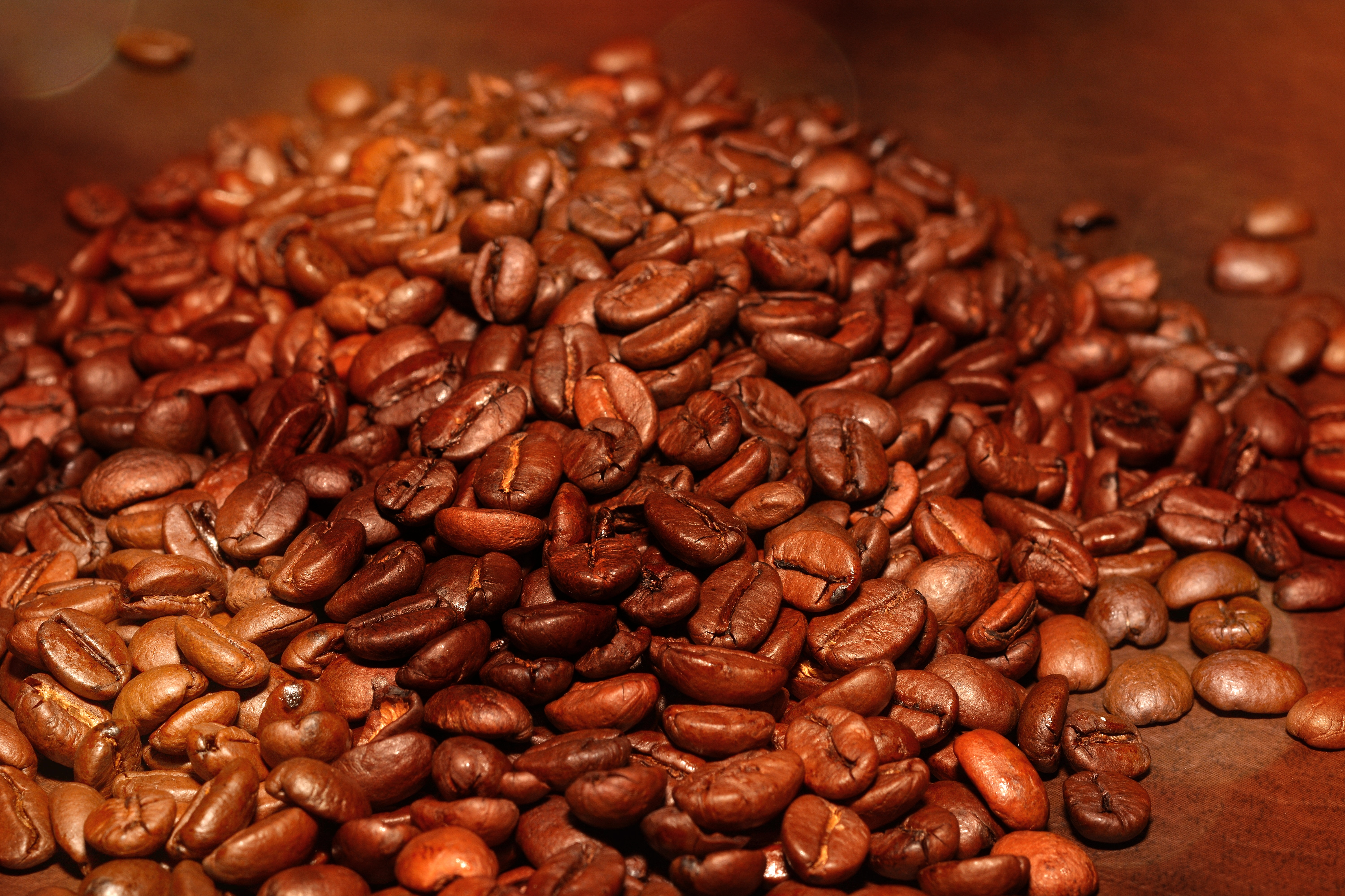 Nature, Seed, Coffee, Brown, Beans, HQ Photo