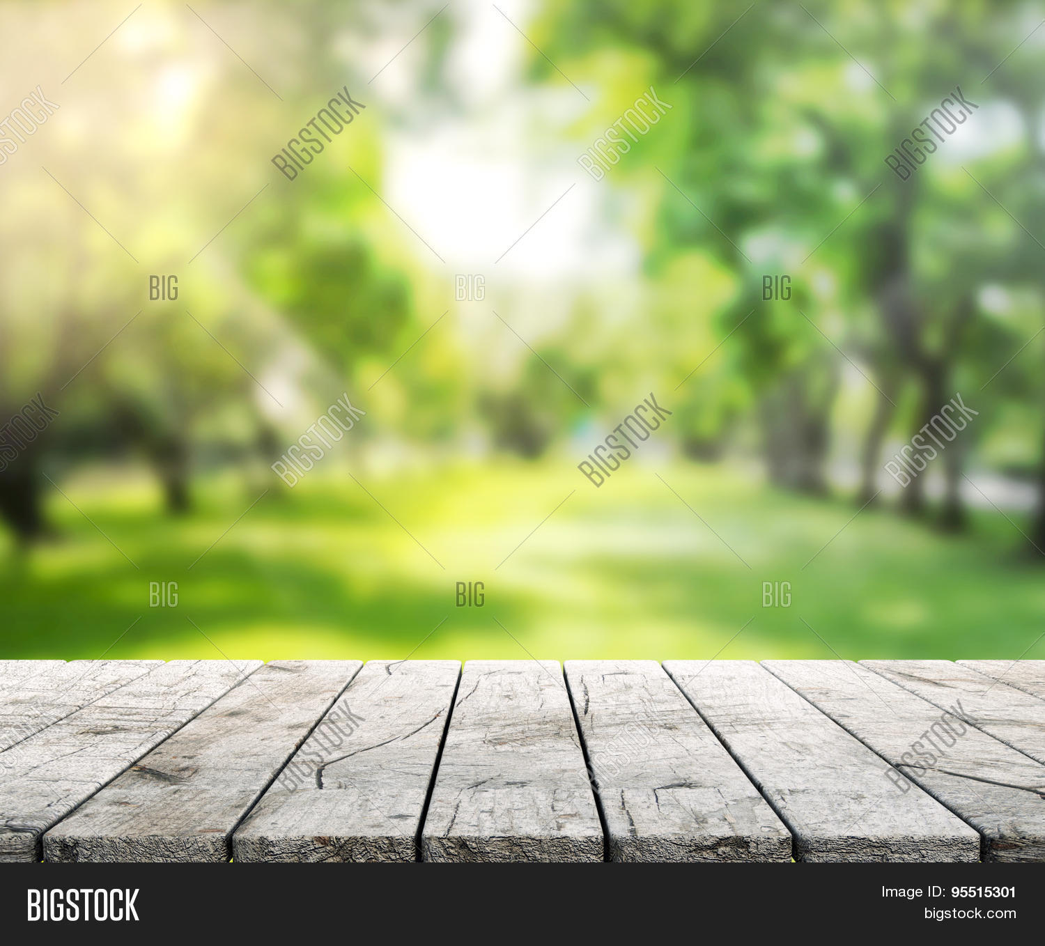 Table Top and Blur Nature the Background Image - cg9p5515301c