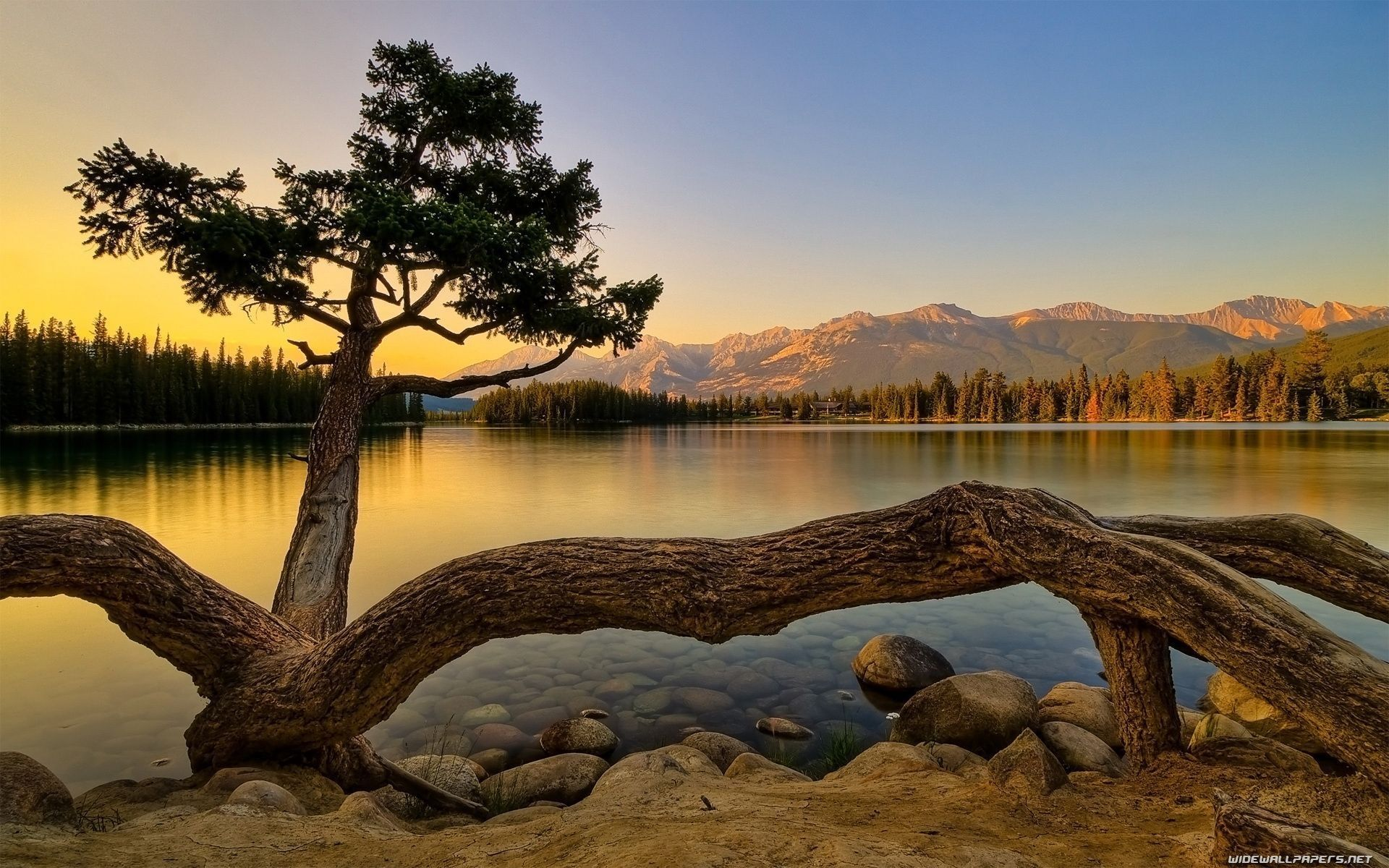 nature background hd download - nature background hd download HD ...