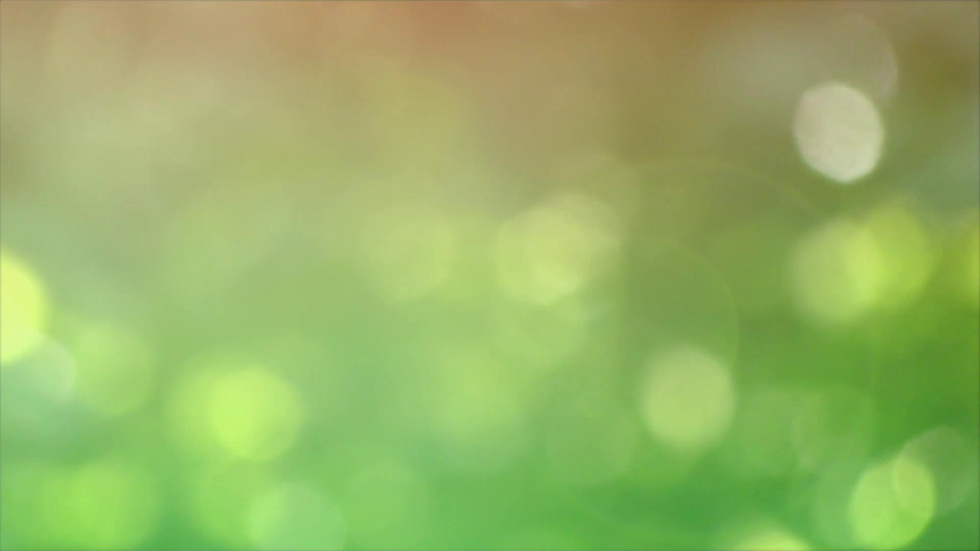 Defocused nature background Stock Video Footage - Videoblocks