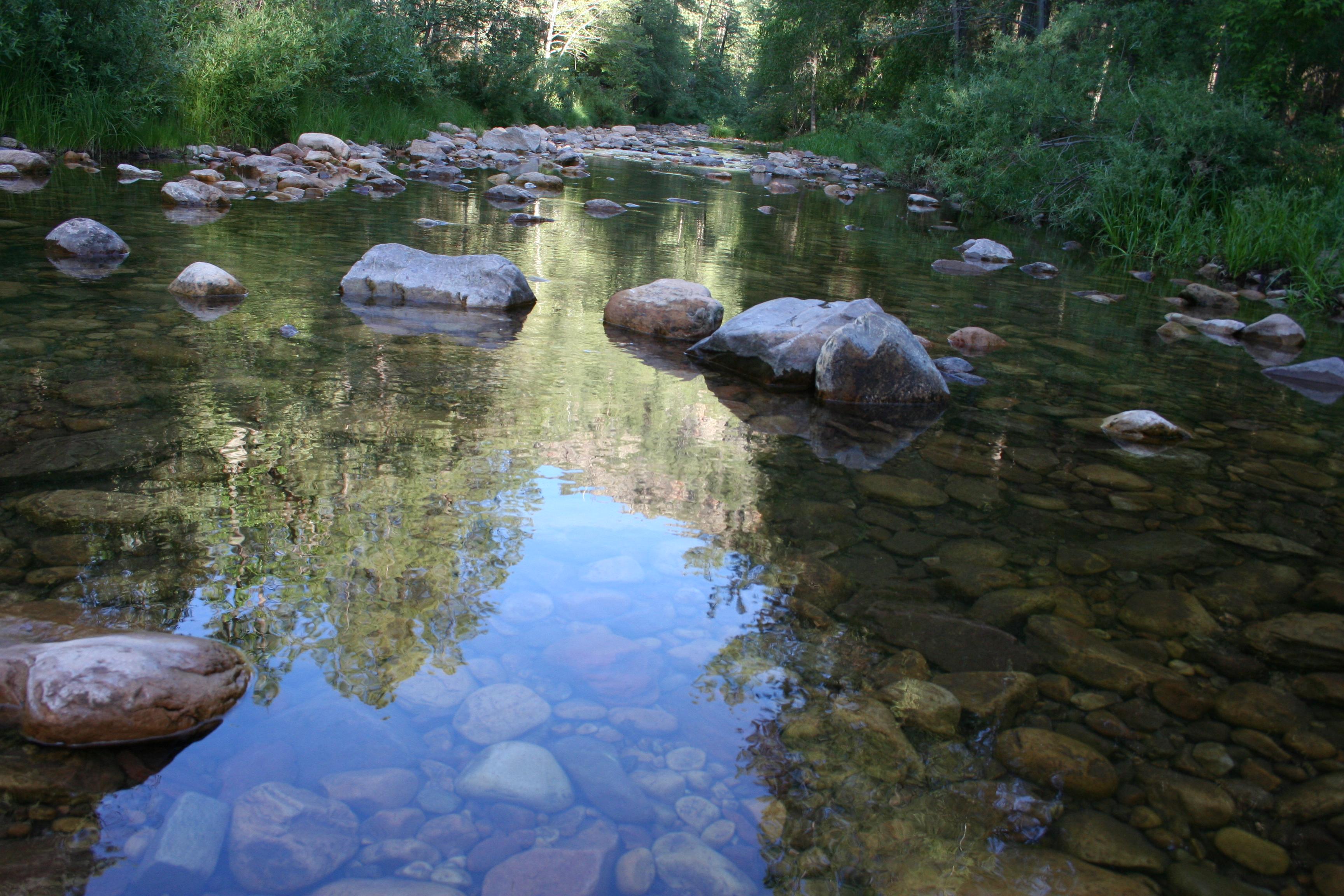 Nature reflections photo
