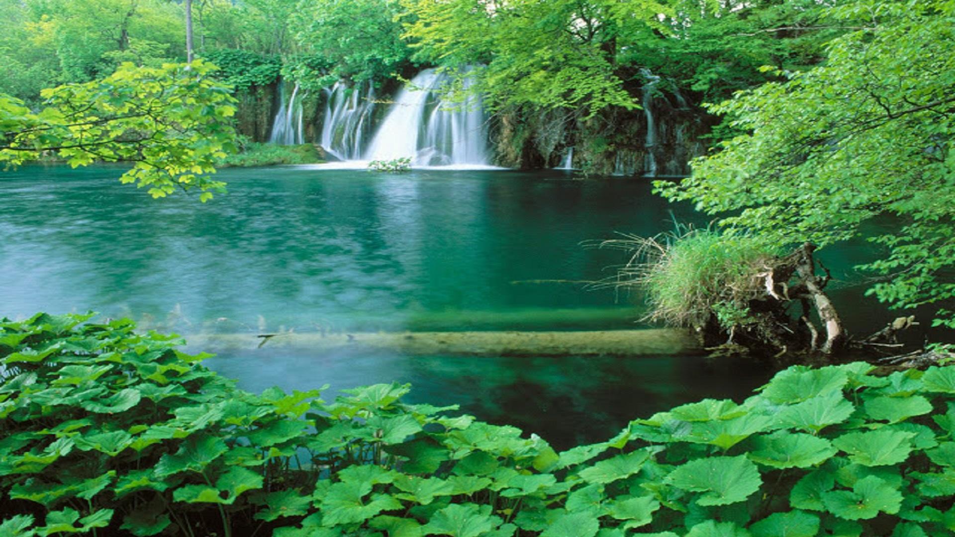 Top-10-Best-Nature-Scene-HD-wallpaper-free-hd-for-desktop - HD Wallpaper