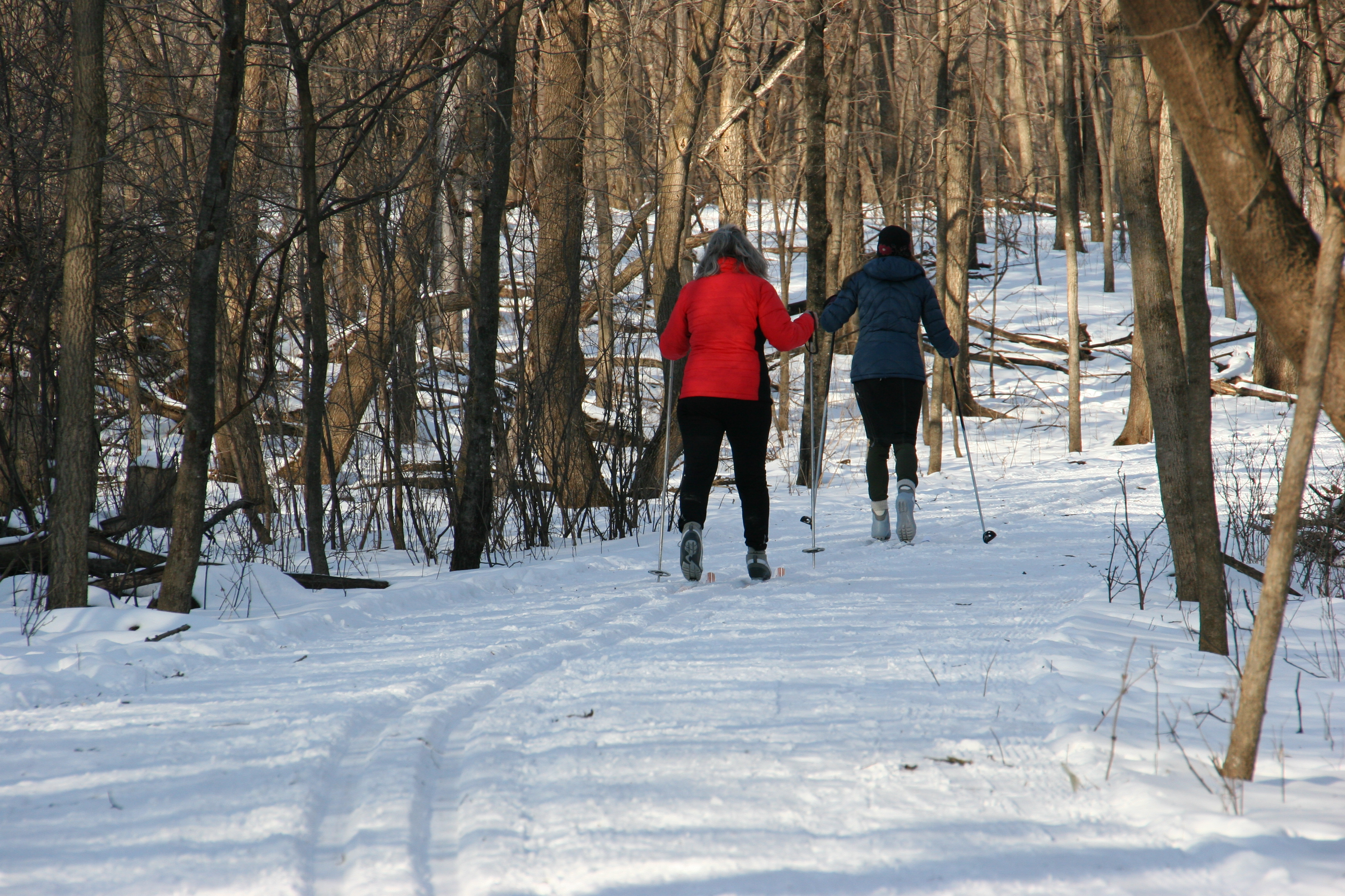 Winter at River Bend Nature Center - Faribault, MN Tourism