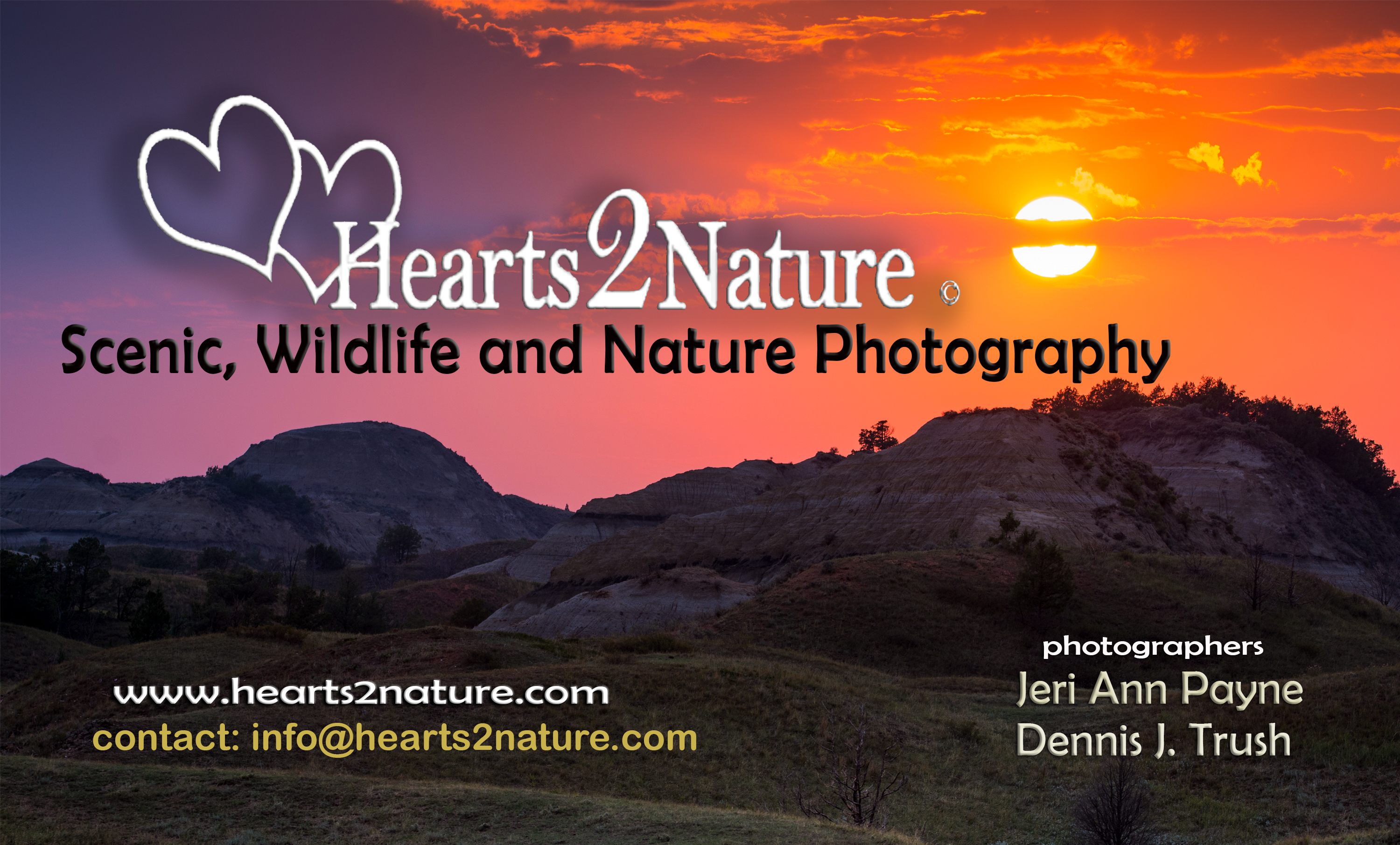Hearts2Nature.com - North Americas Wildlife and Nature Photography ...