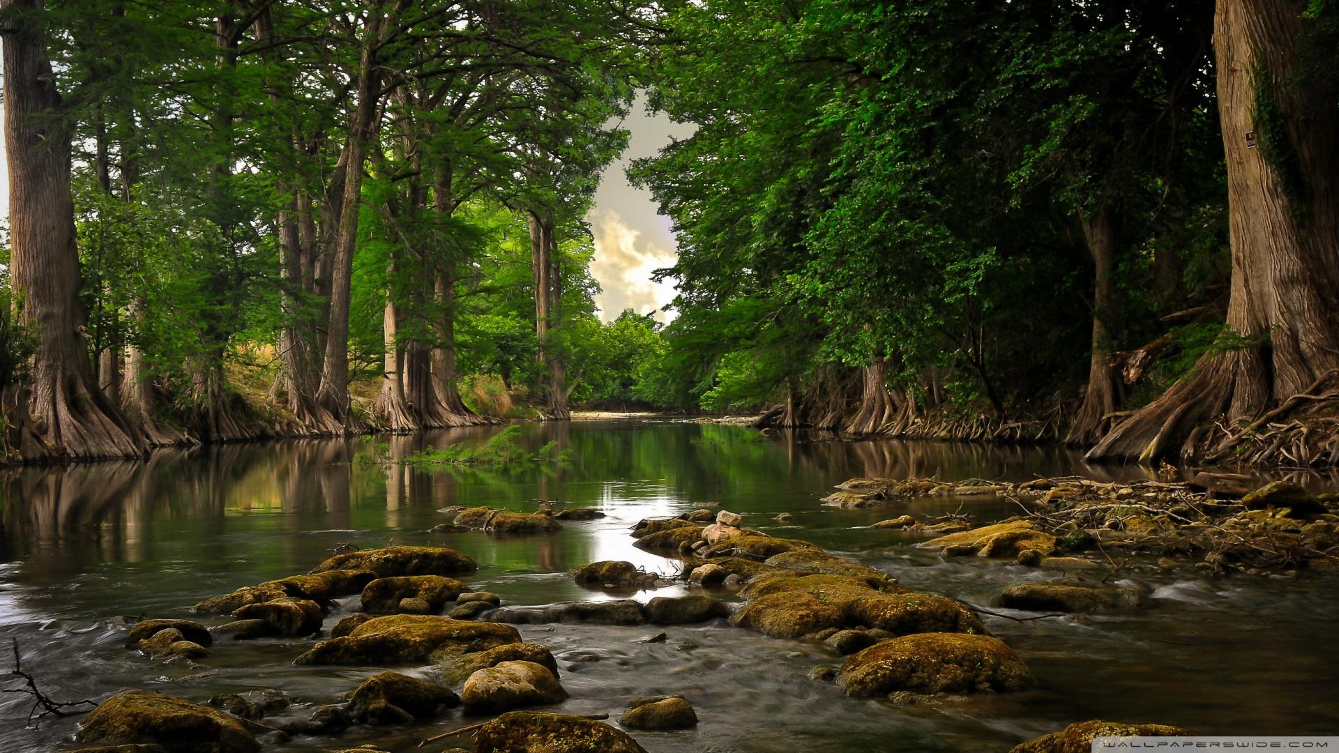 Near the river photo