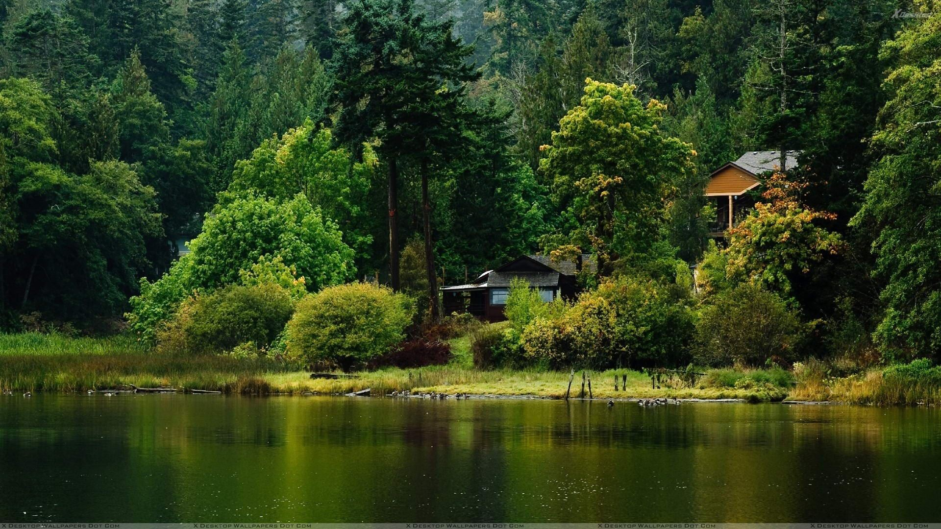 Hut In Greenery And Near River Wallpaper