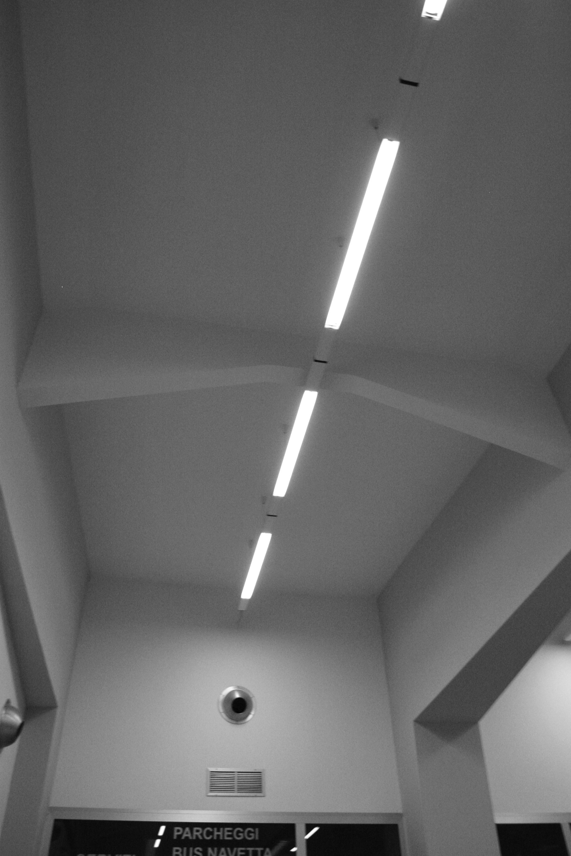 Neons photo