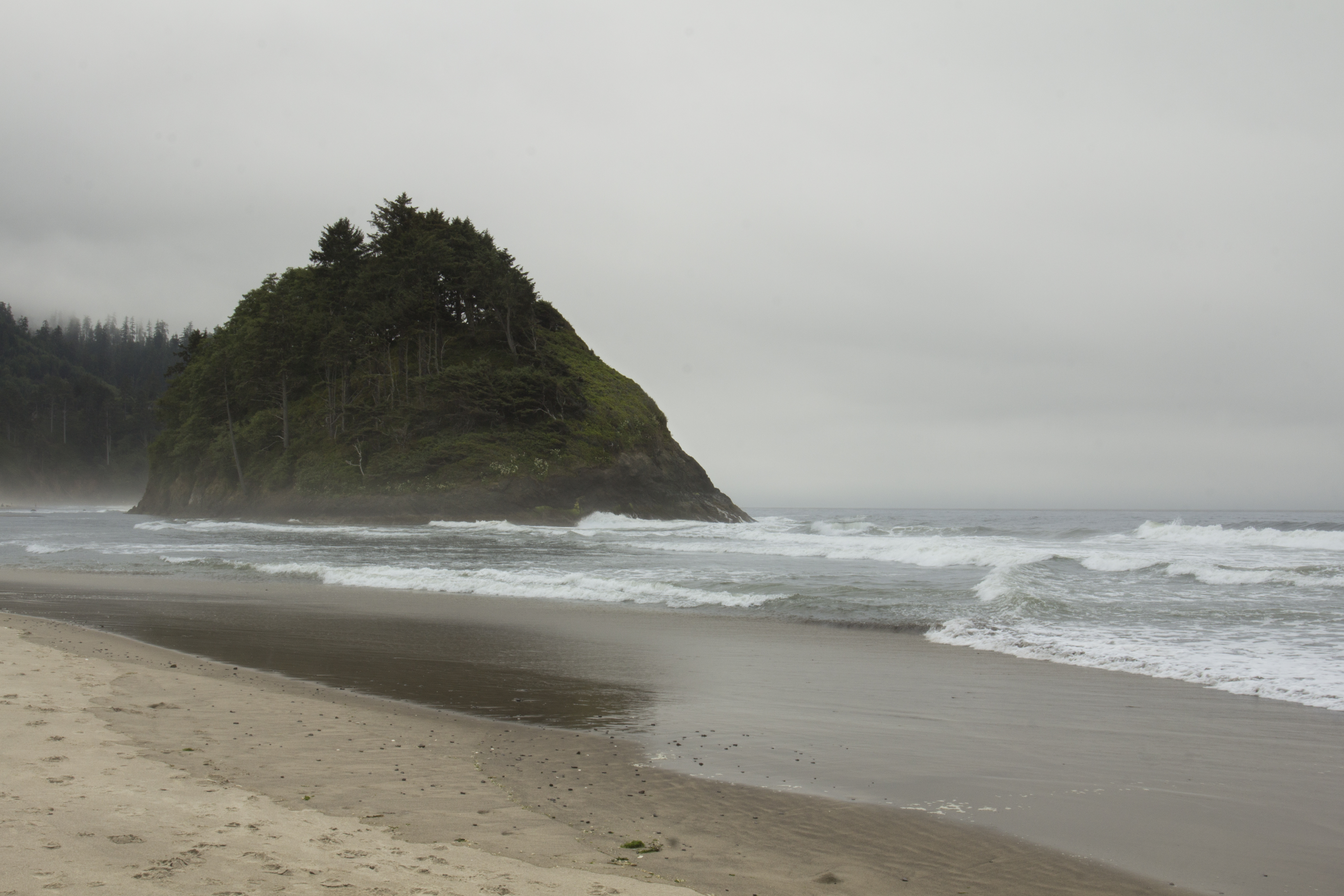 Neskowin beach, oregon photo