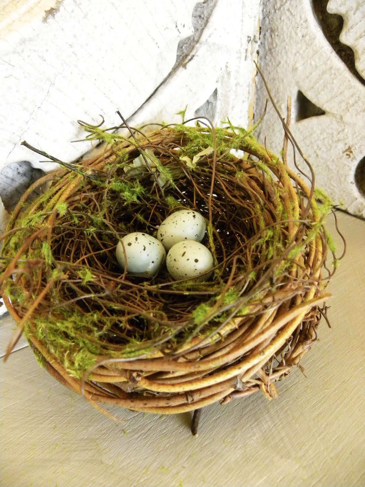 Natural nest embellished with moss and tiny blue eggs. Along with ...