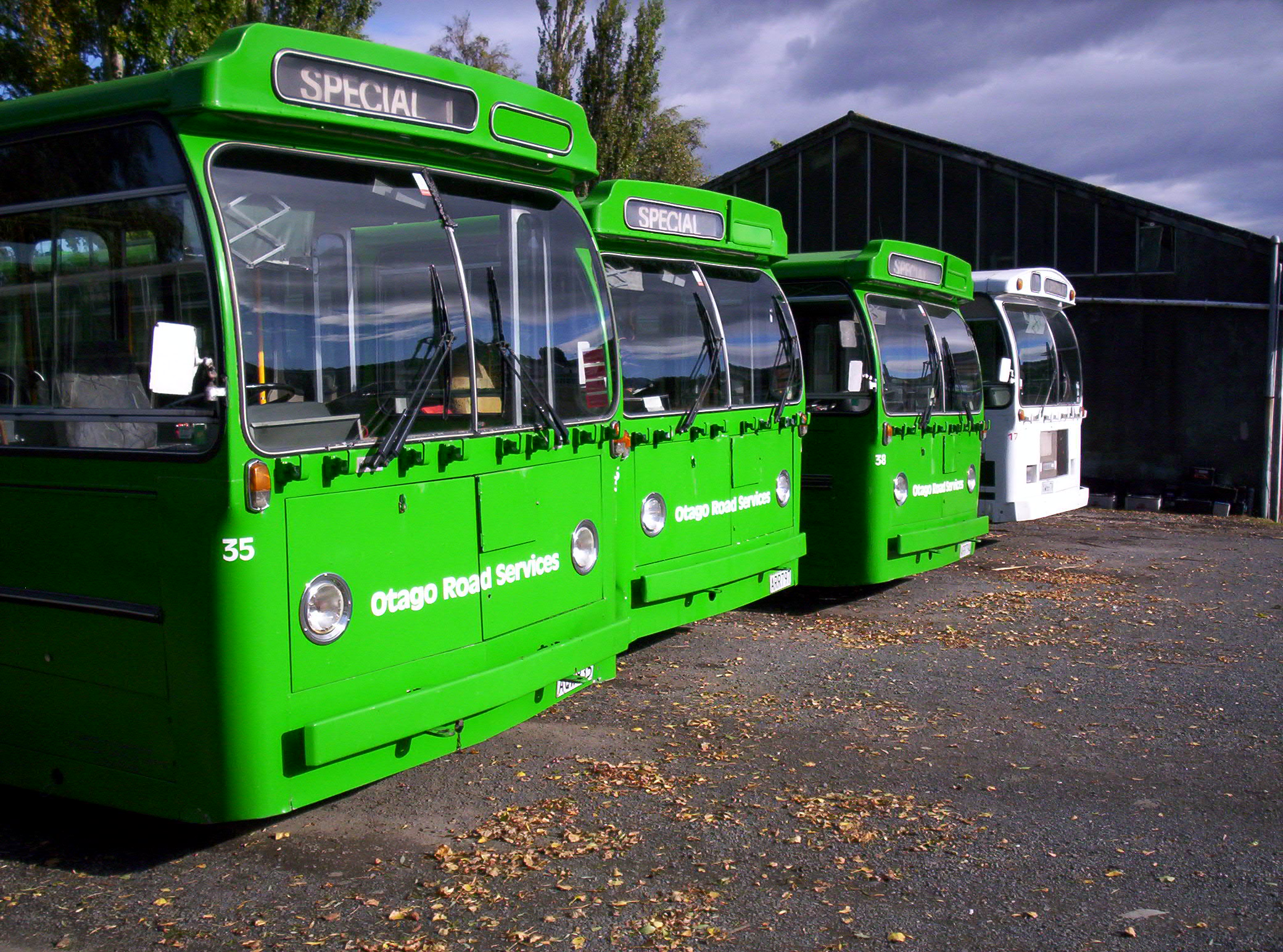 New zealand is about green buses photo