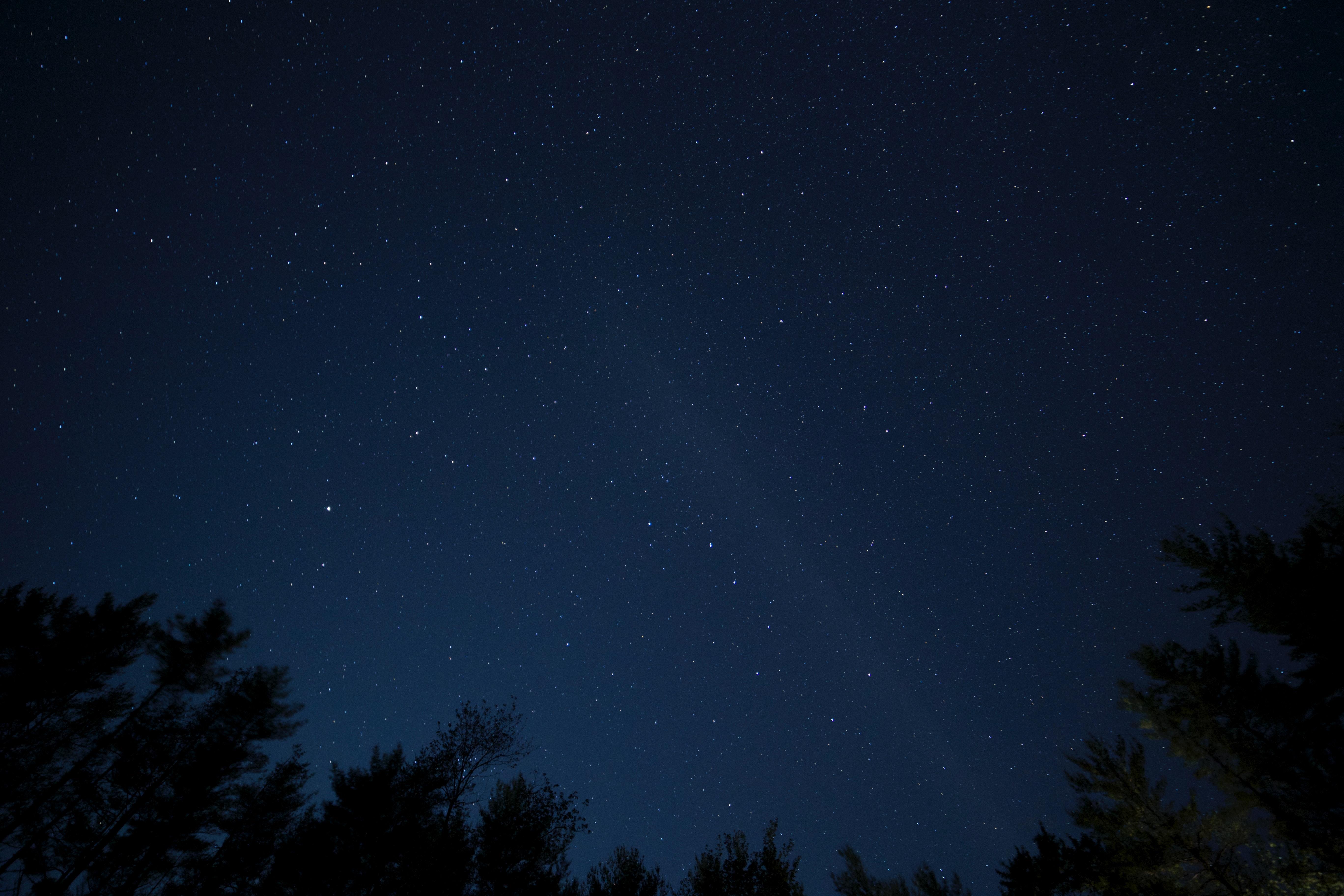 Free stock photo of black wallpaper, night, sky
