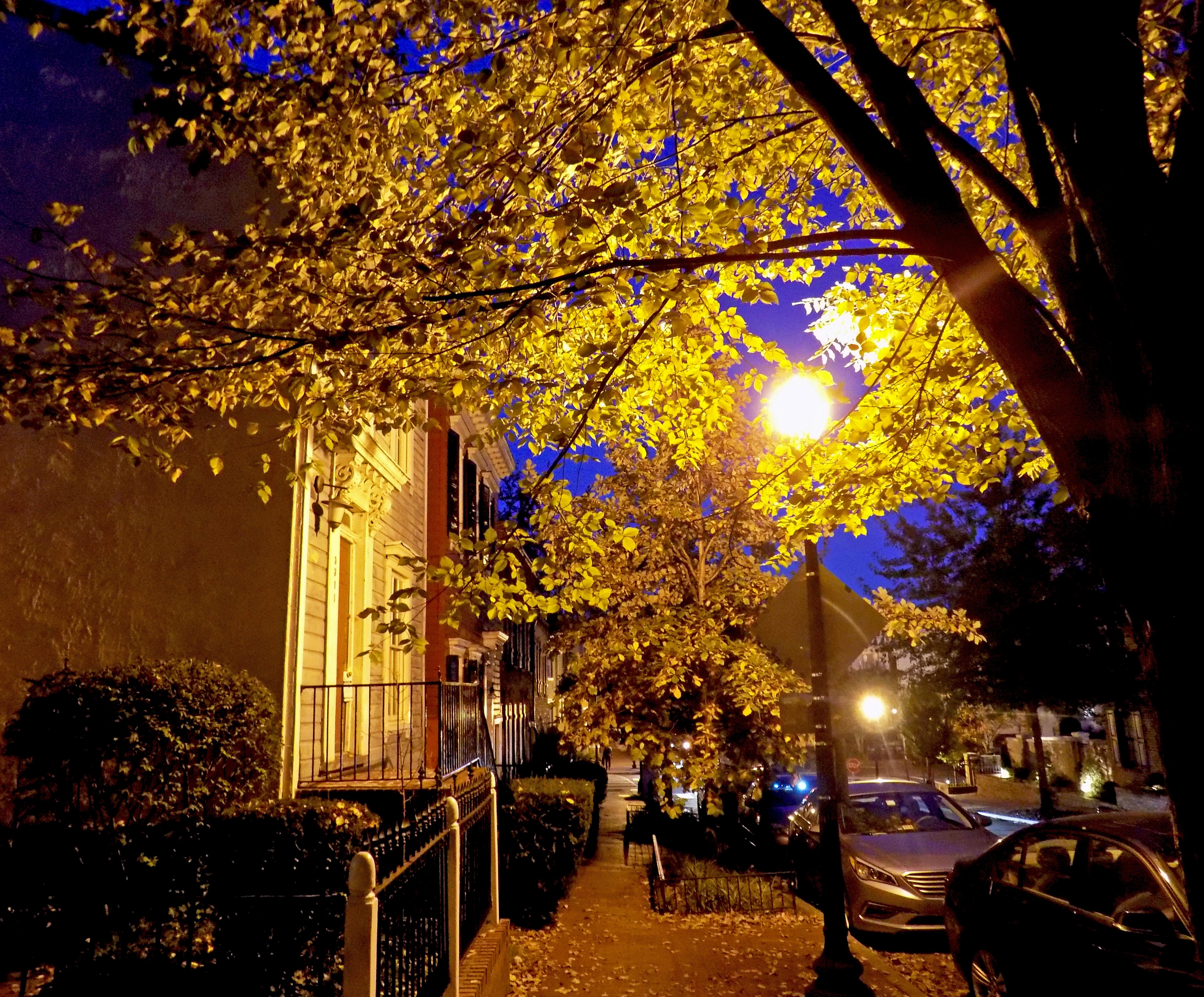 Night Fall Street, Autumn, Car, Fall, Leaves, HQ Photo
