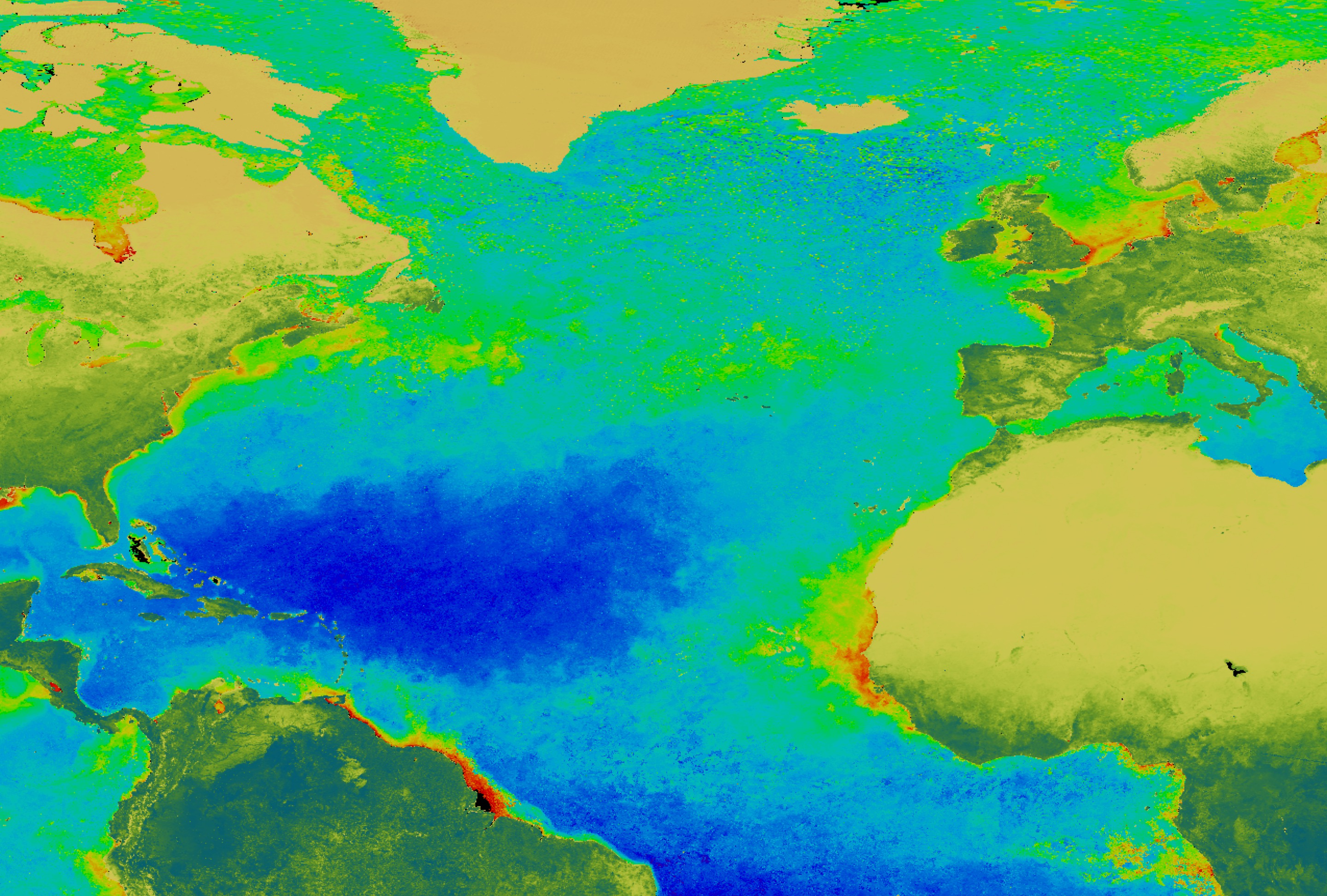 SVS: SeaWiFS: the North Atlantic Bloom