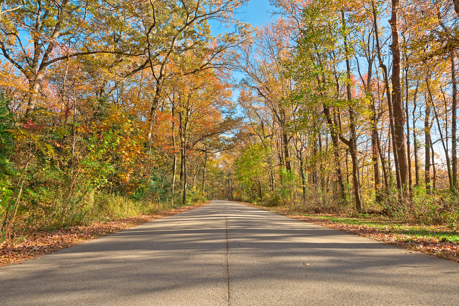 North Point Fall Road - HDR, America, Passageway, Rural, Route, HQ Photo