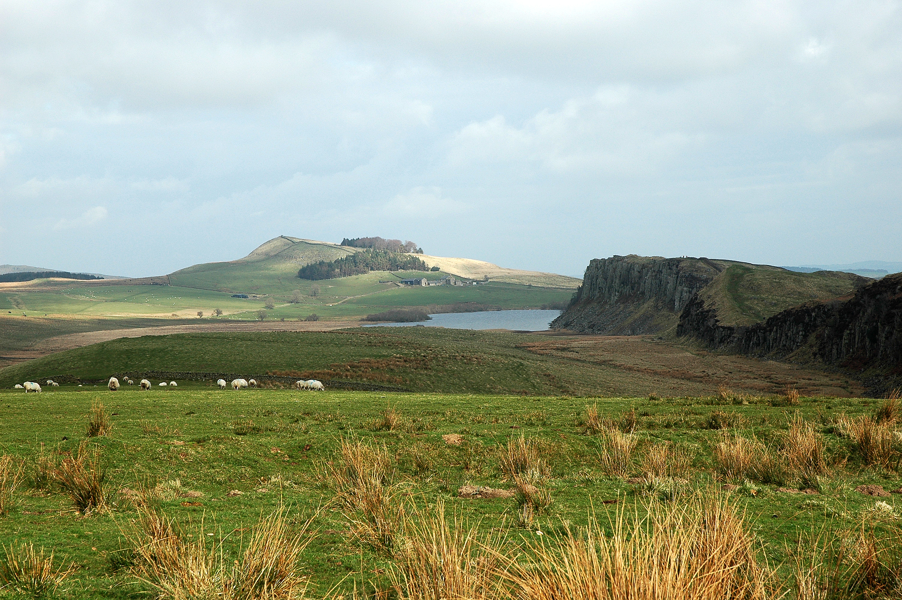 Northumberland photo