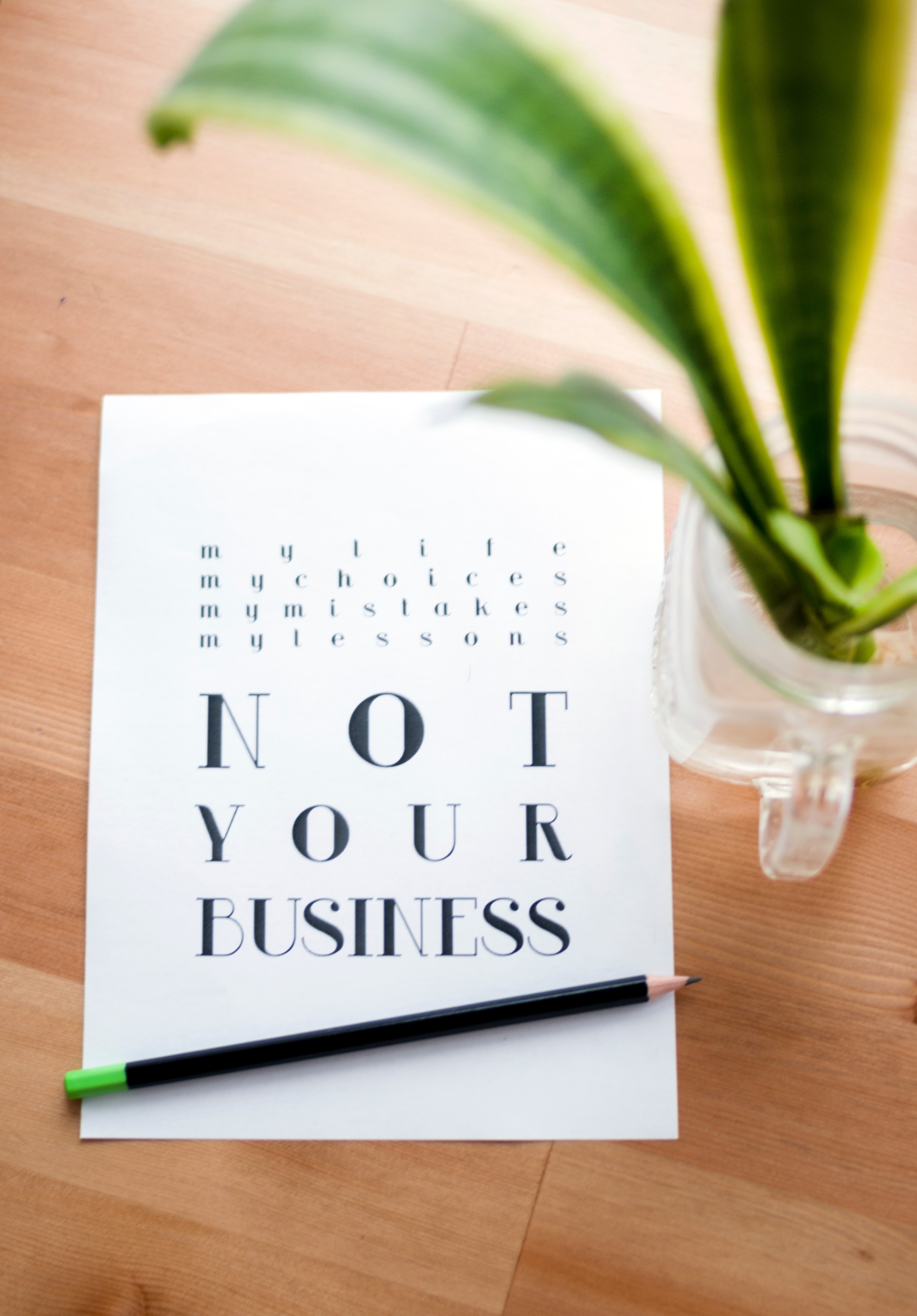 Not Your Business Print Poster, Plant, Wooden, Wood, Vase, HQ Photo