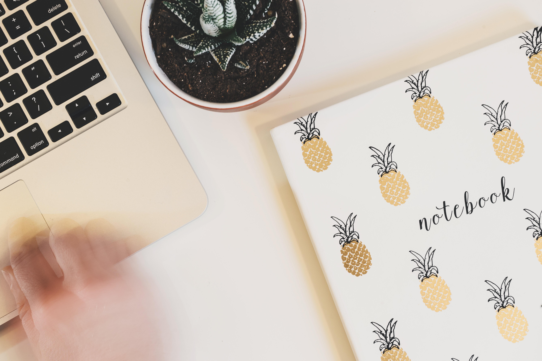 Notebook Beside Laptop Computer, Pot plant, Succulent, Plant, Pineapple, HQ Photo