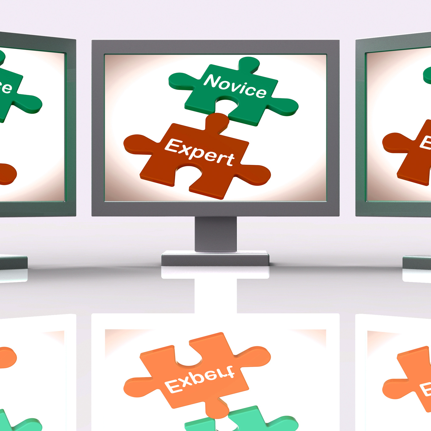 Novice expert puzzle screen shows unskilled and professional photo